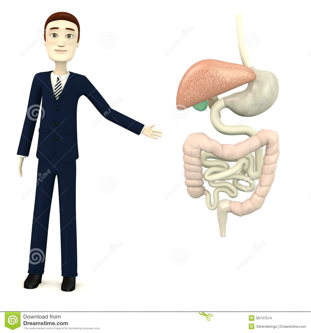 Cartoon Busiinessman With Digestive System Stock Images
