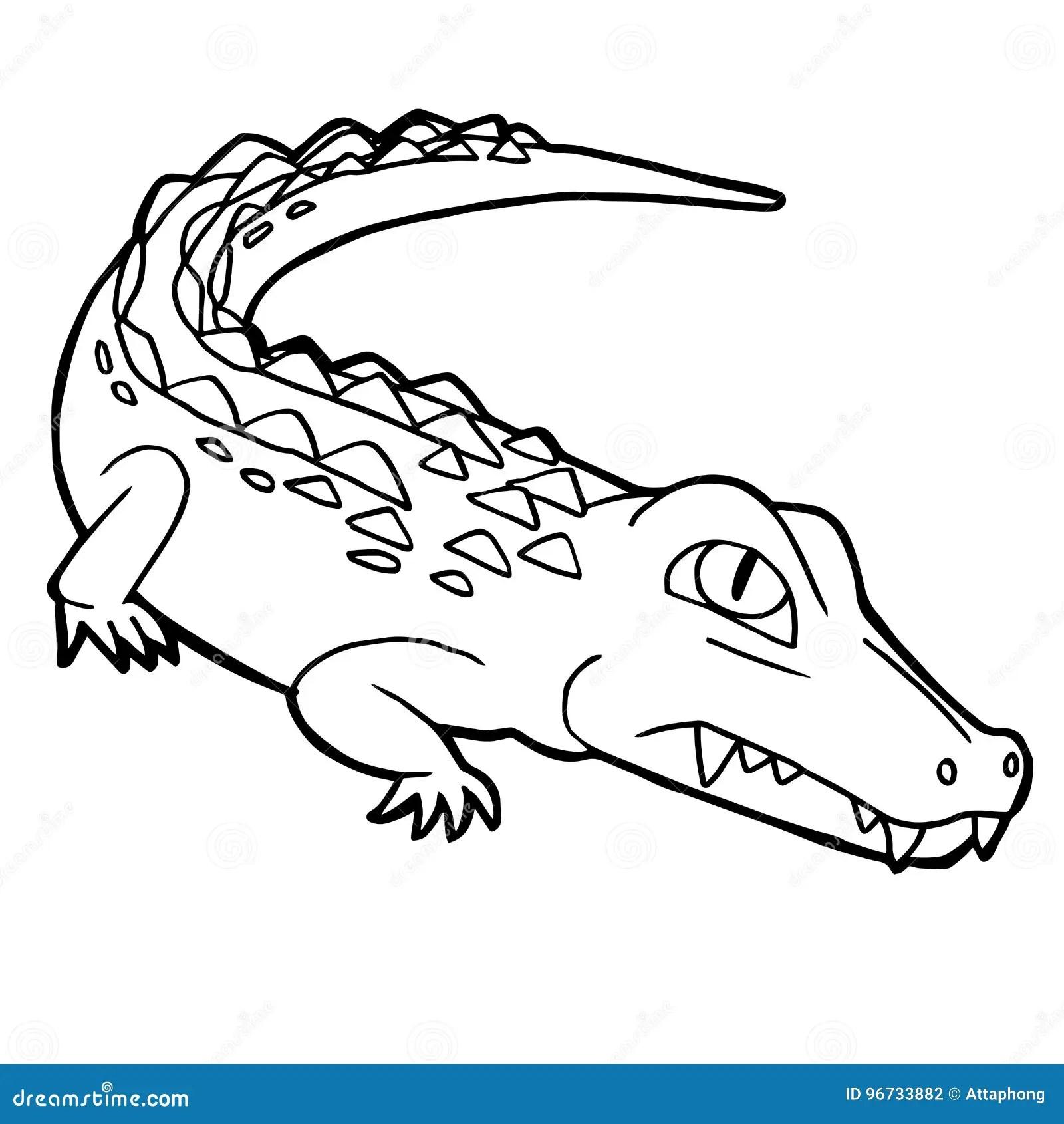 Cartoon Cute Crocodile Coloring Page Vector Stock Vector