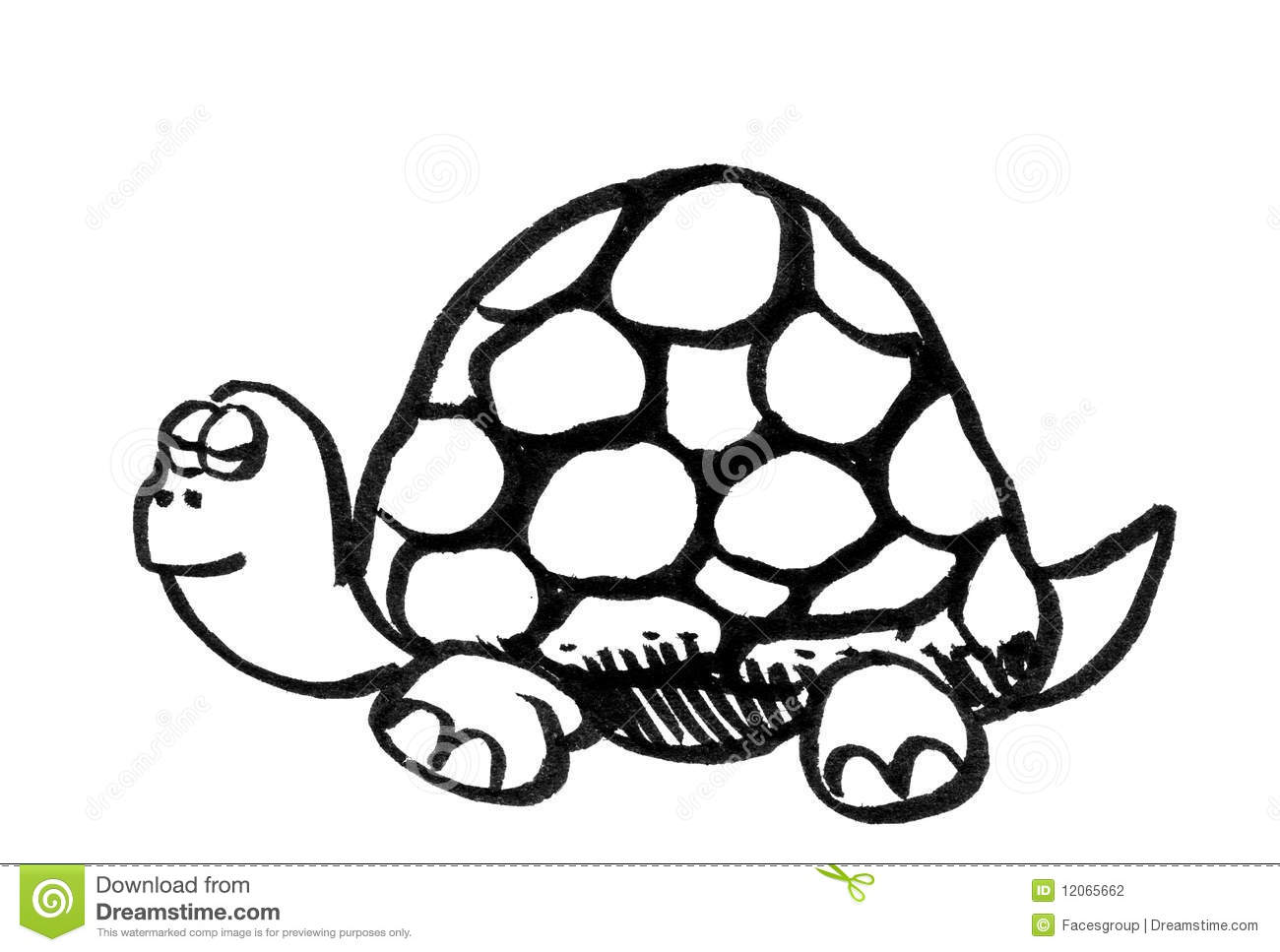 Cartoon Drawing Of A Turtle Stock Illustration