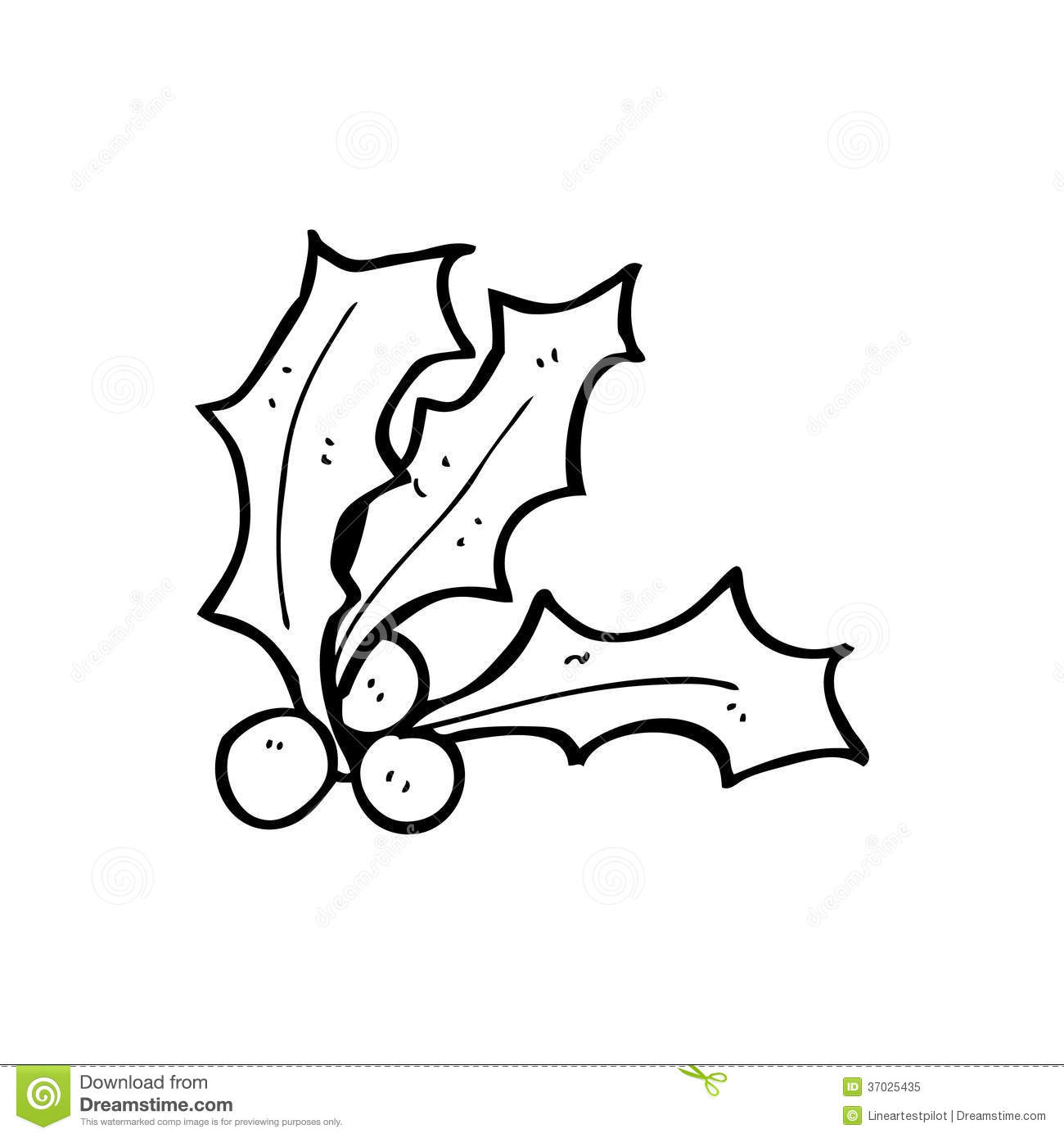 Cartoon Holly Stock Illustration Image Of Drawing Drawn