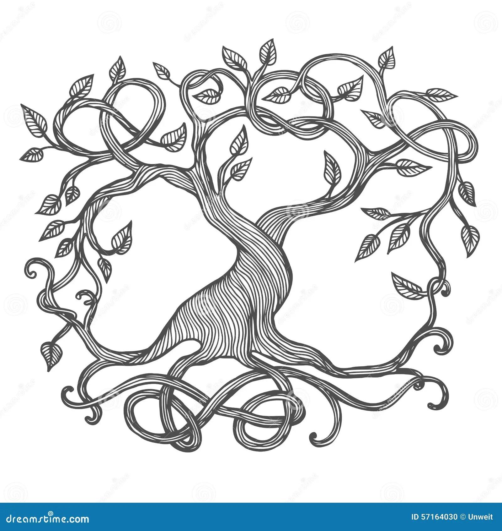 Celtic Tree Of Life Stock Vector Illustration Of