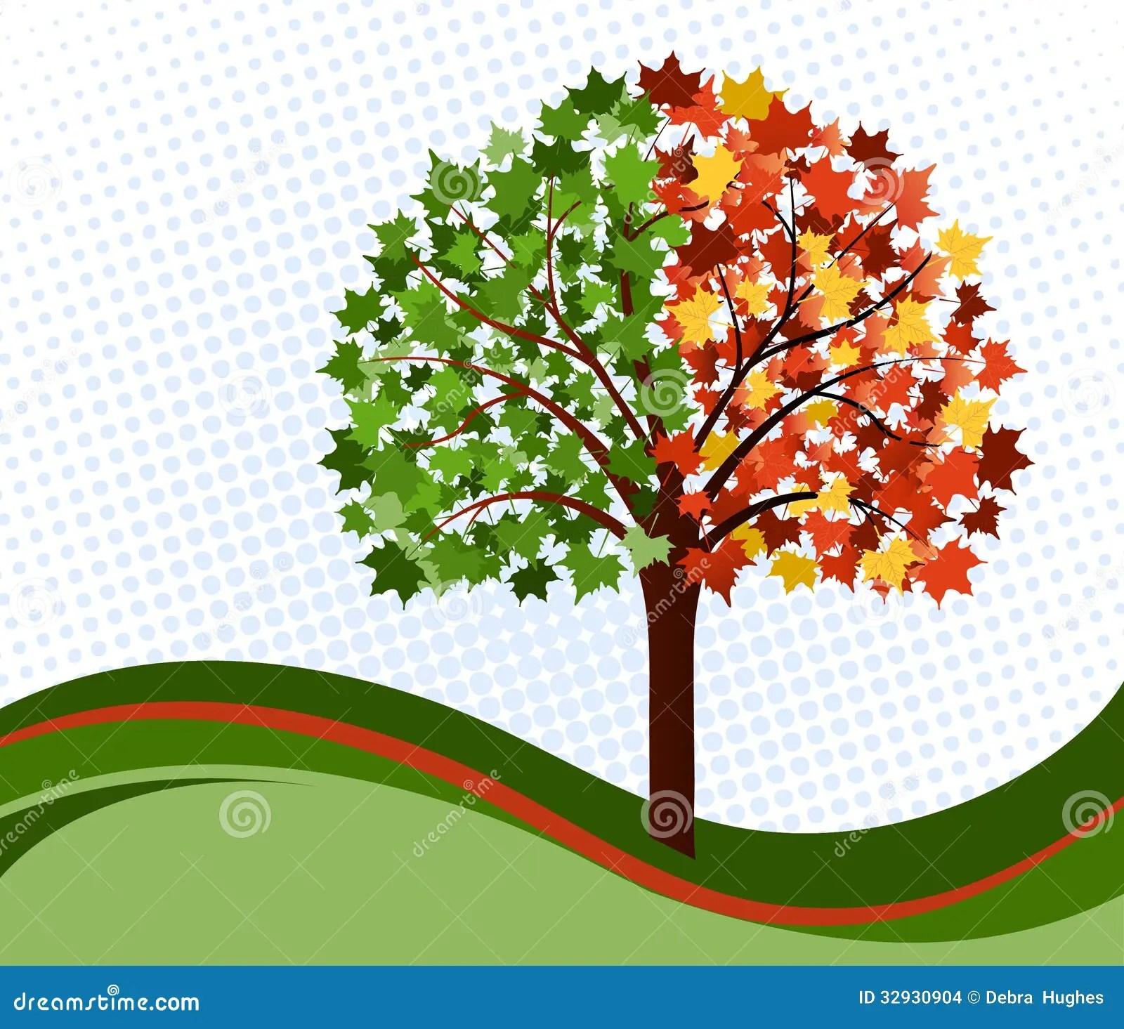 Changing Seasons Tree Stock Images