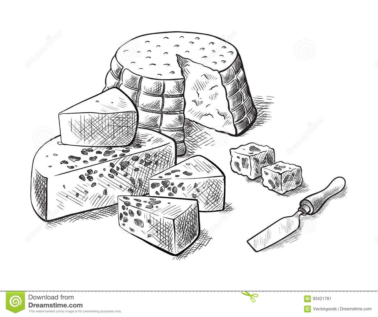 Cheese Making Various Types Of Cheese Set Of Vector