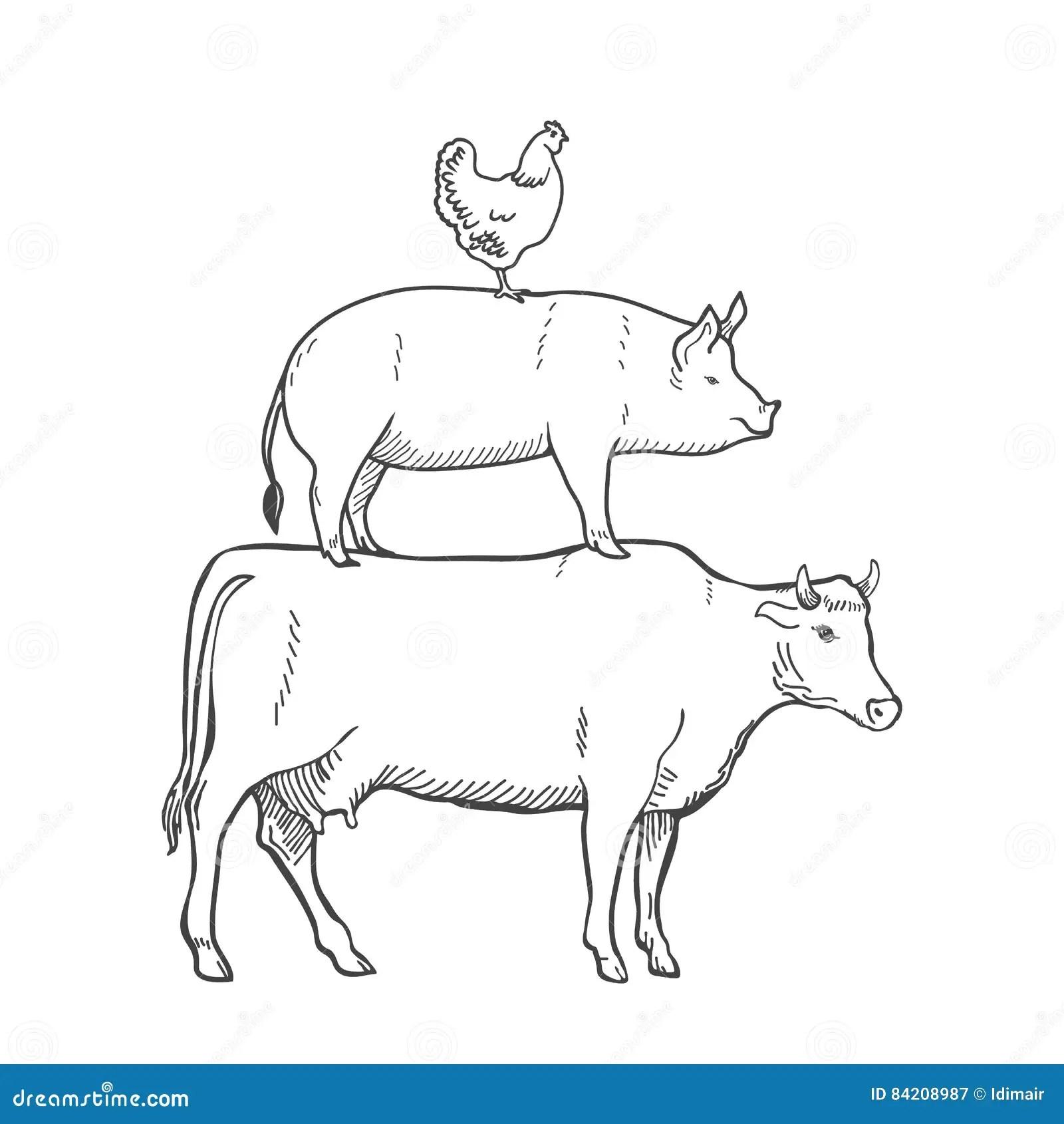 Chicken Pork Cow Farm Animals Vector Stock Vector