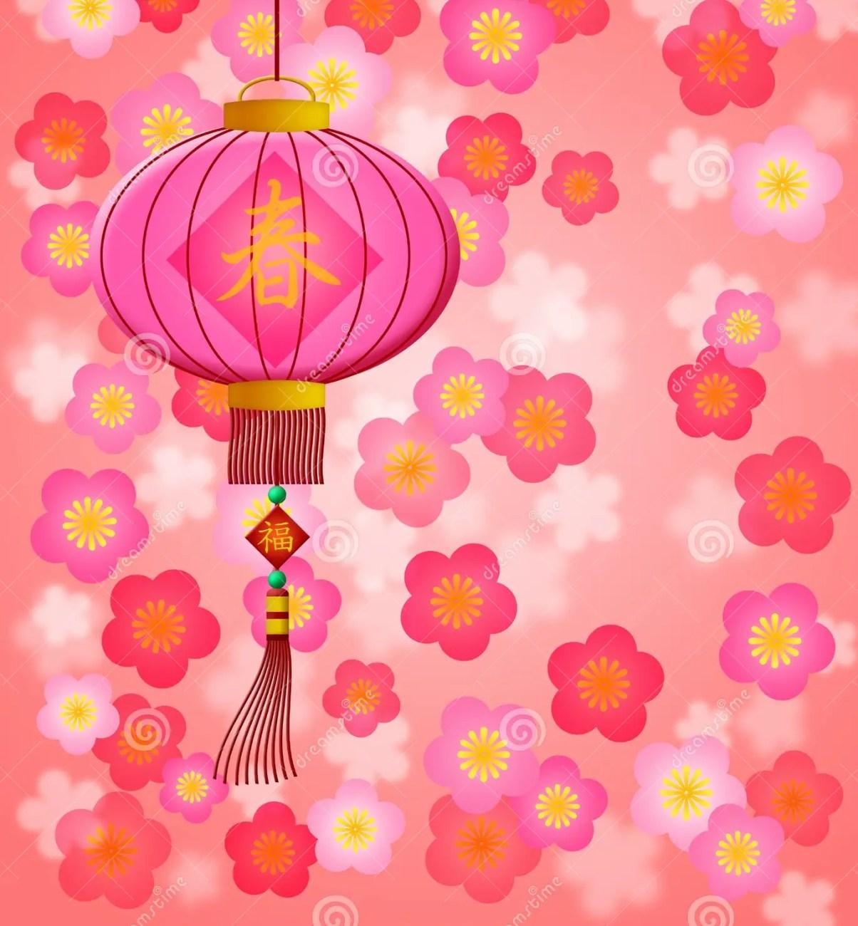 chinese new year lantern cherry blossom royalty free stock image