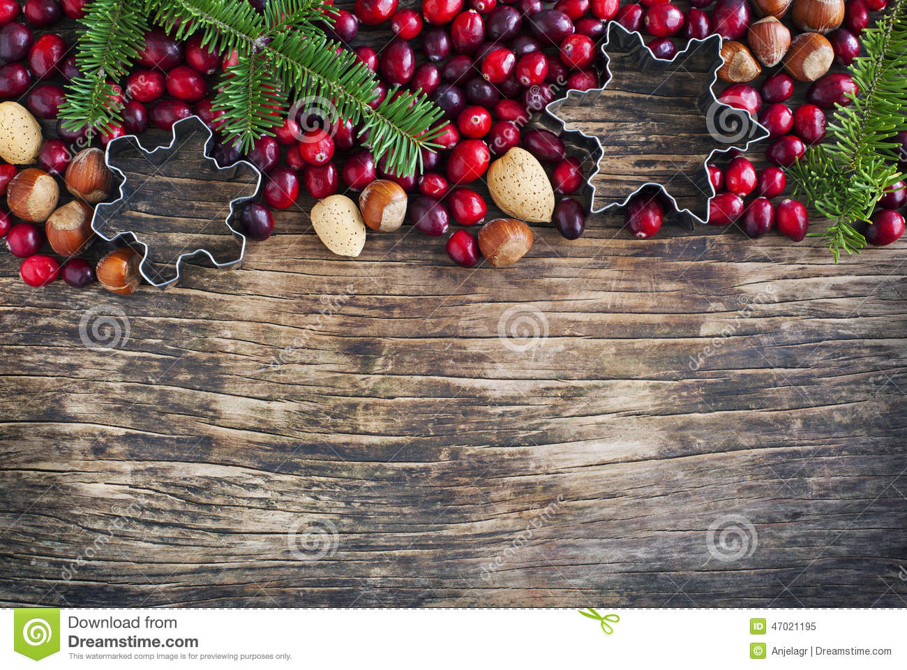 Christmas Border With Cranberries Spruce Branch And