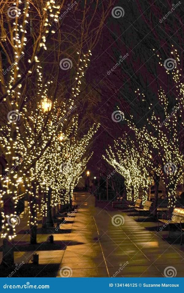 christmas lights usa # 56
