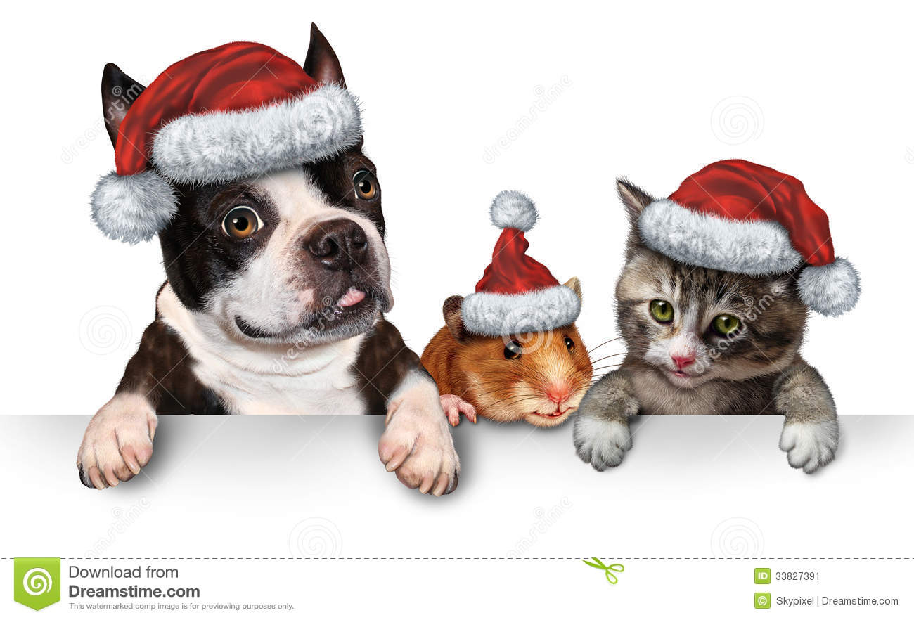 Christmas Pet Sign Stock Illustration Image Of Animals