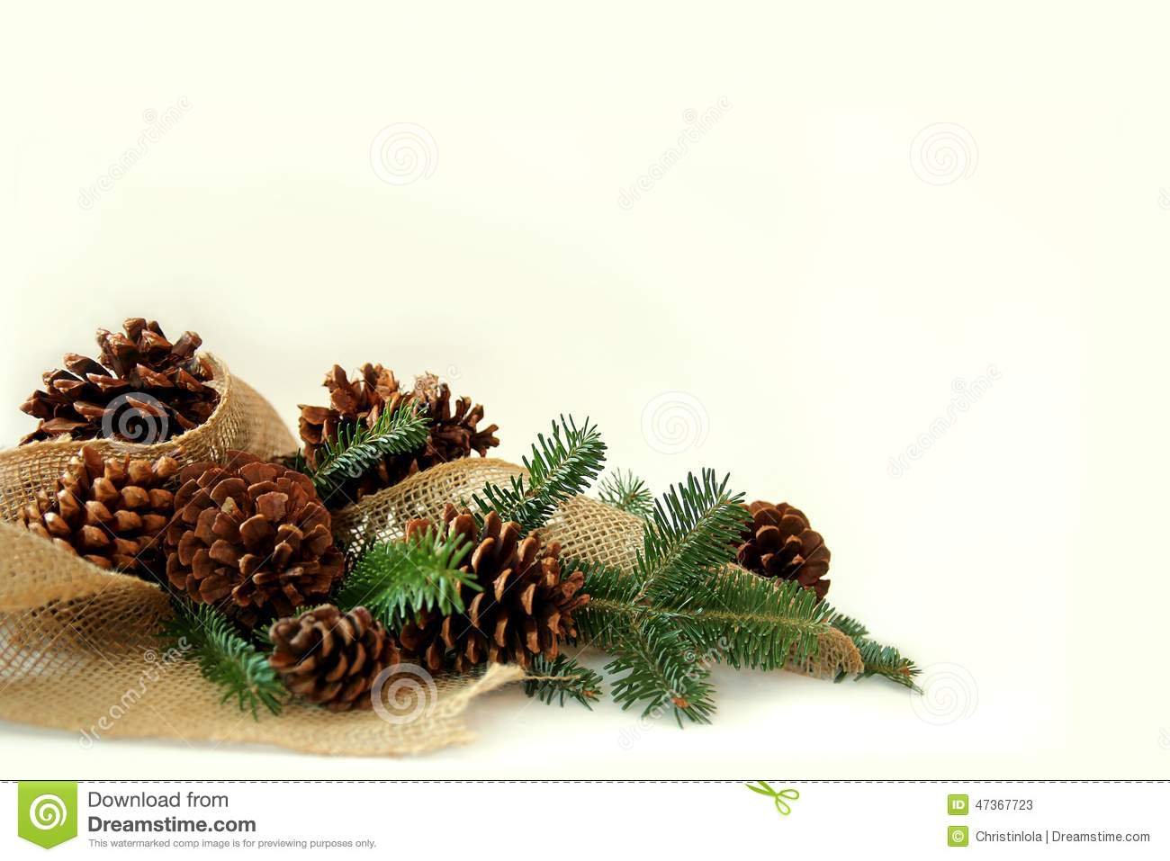 Christmas Tree Branches Pine Cones And Burlap Border