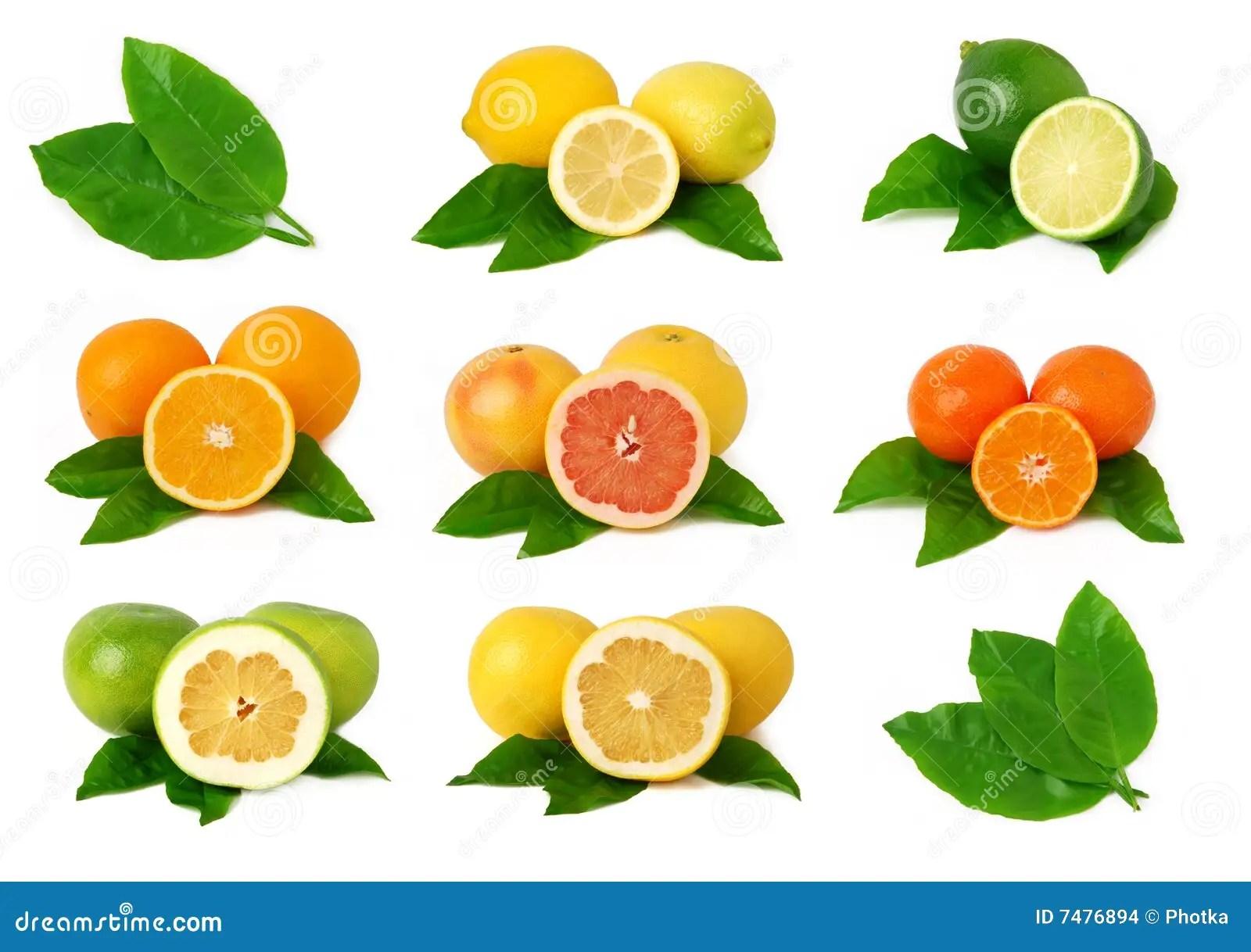 Yellow Orange Hibiscus