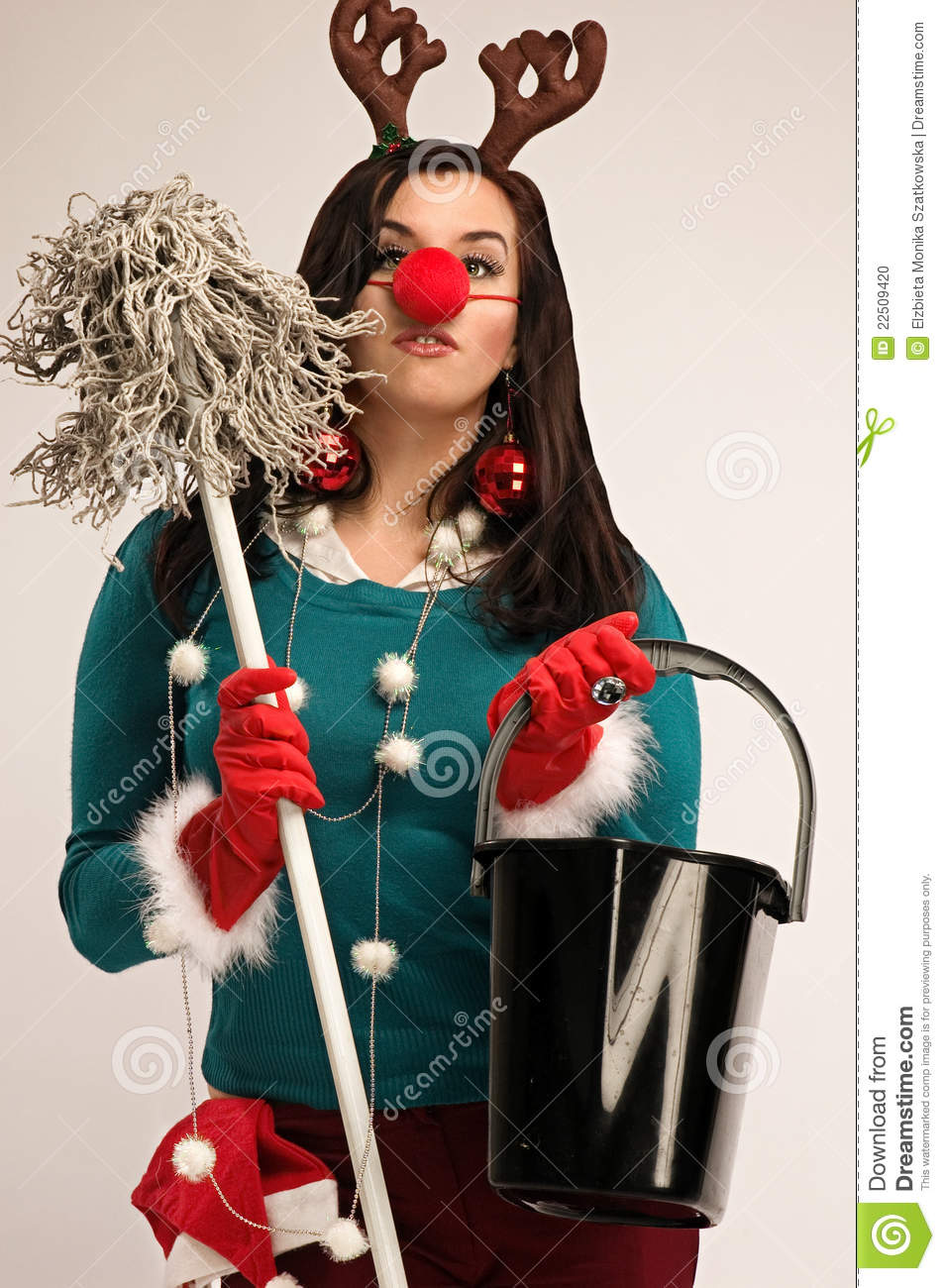 Cleaning After Christmas Stock Photo Image 22509420