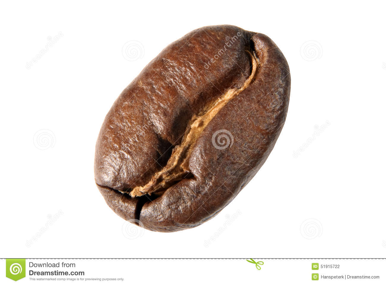 What Fresh Roasted Coffee