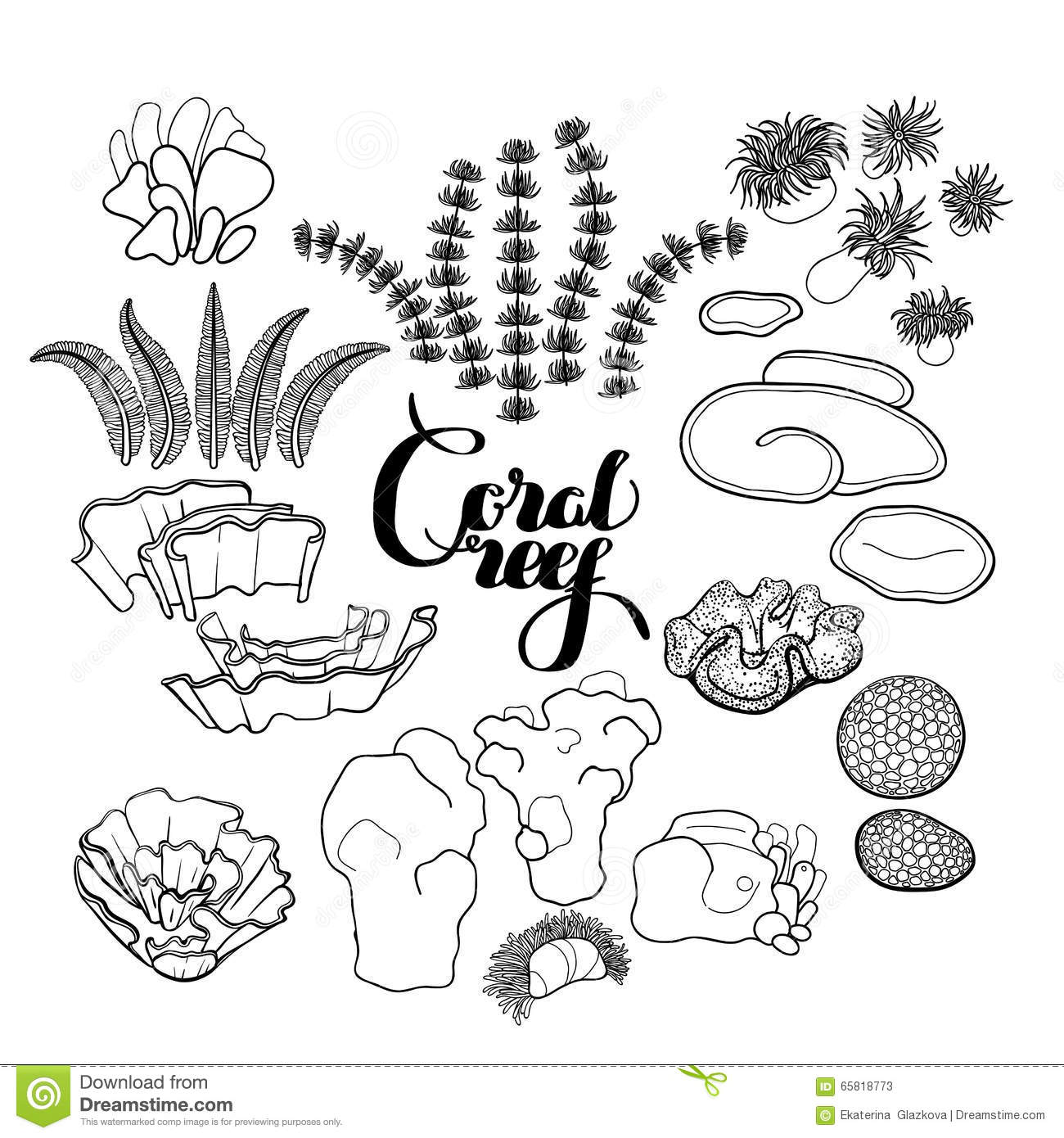 Coral Reef Color Pages Preschool Pictures To Pin On
