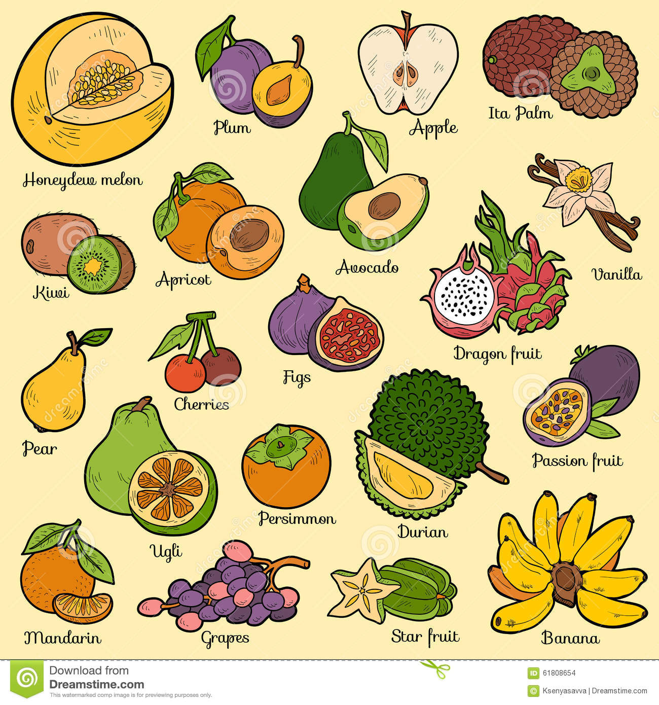 Color Set With Tropical Fruits Vector Cartoon Stickers