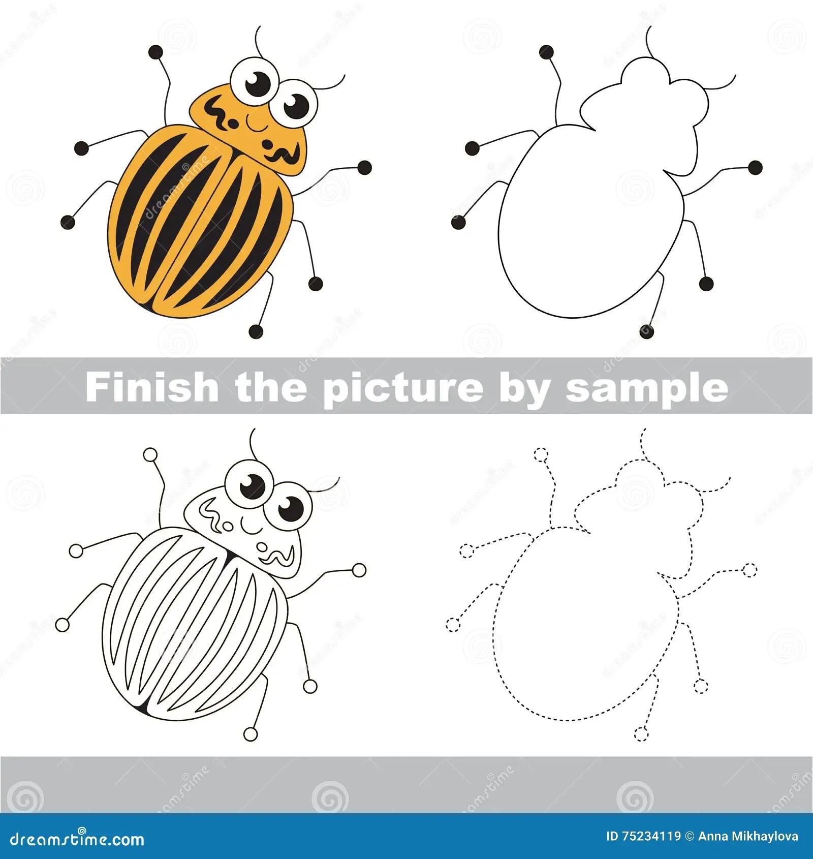 Colorado Potato Beetle Drawing Worksheet Stock Vector