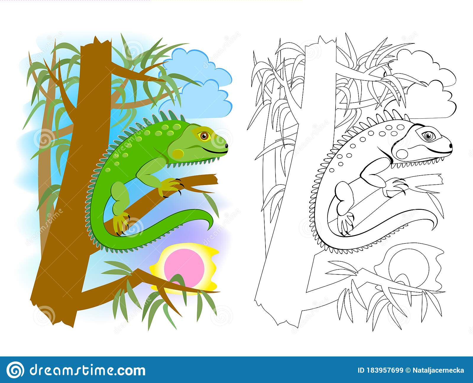 Colorful And Black And White Page For Kids Coloring Book