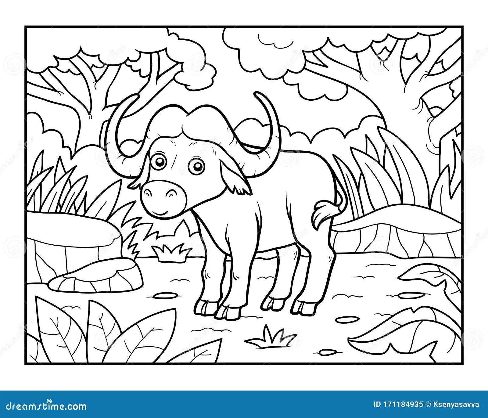 Coloring Book Buffalo In The African Savannah Stock