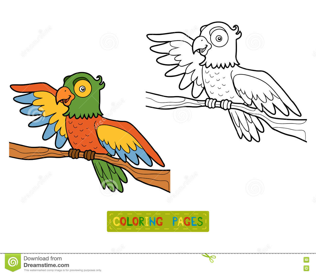 Coloring Book Parrot Stock Vector Illustration Of