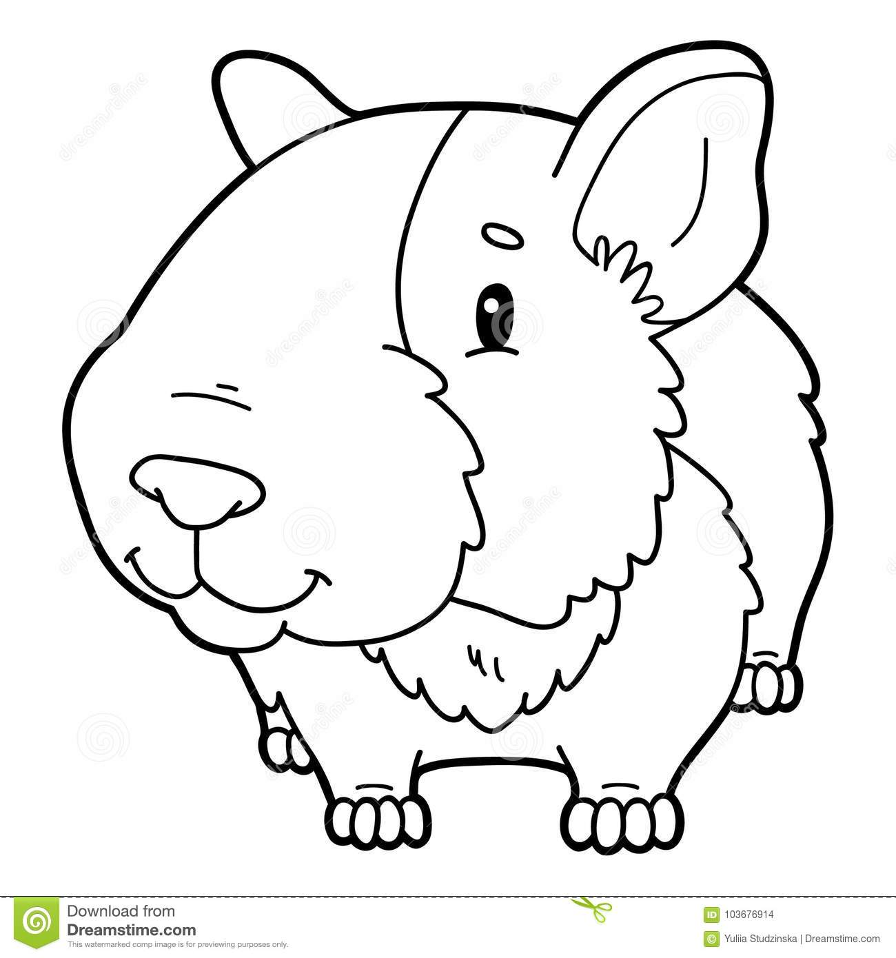 Coloring Page Cartoon Guinea Pig Stock Vector