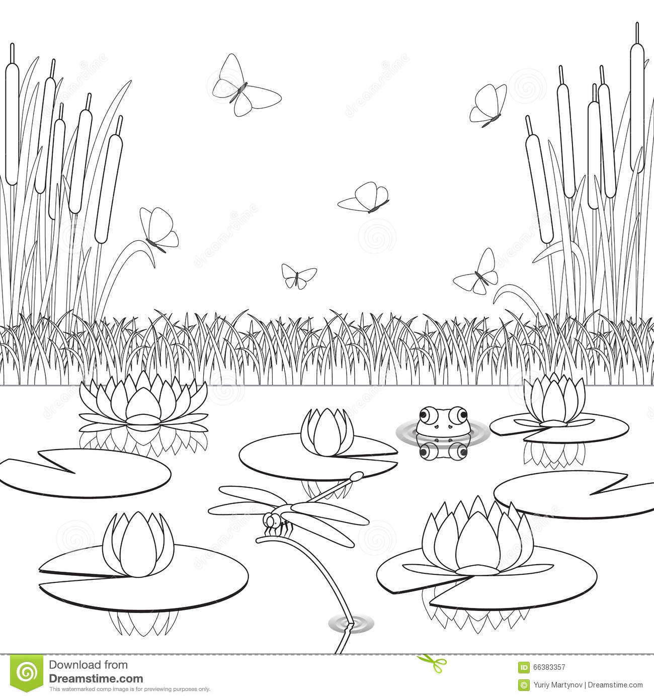 Coloring Page With Pond Inhabitants And Plants Stock