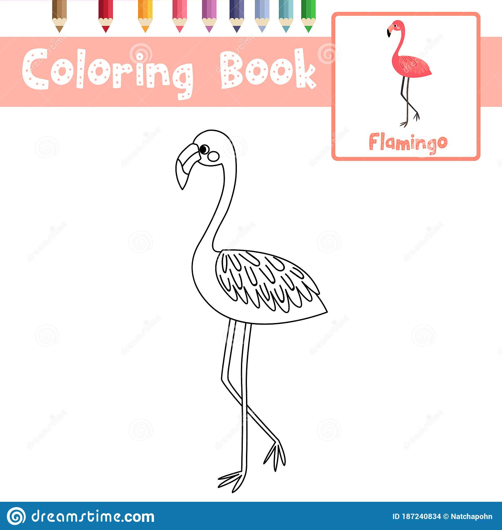 Coloring Page Standing Flamingo Animal Cartoon Character