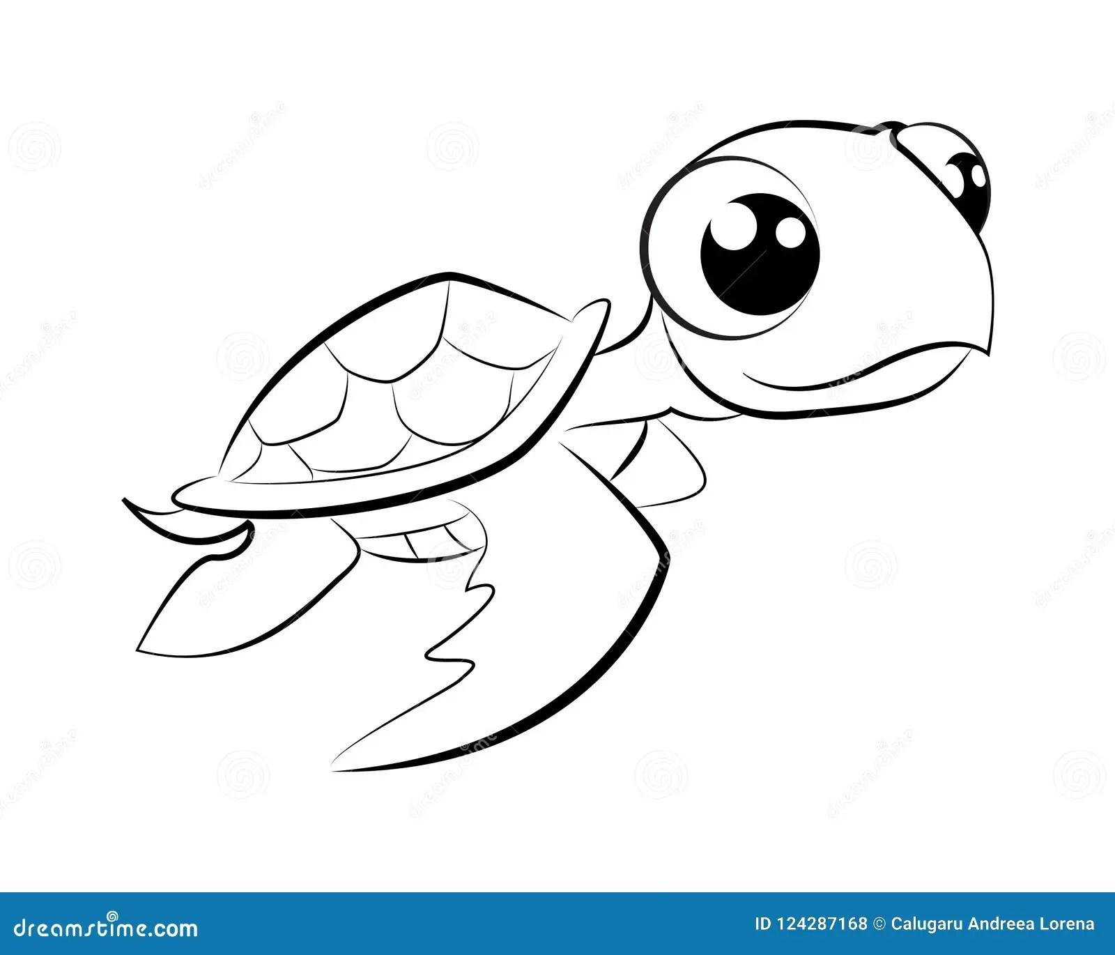 Wiring Tortoise