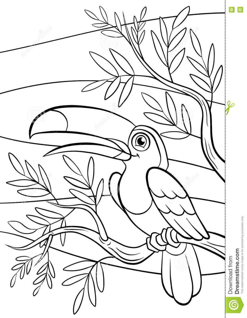 coloring pages. birds. little cute toucan. stock vector