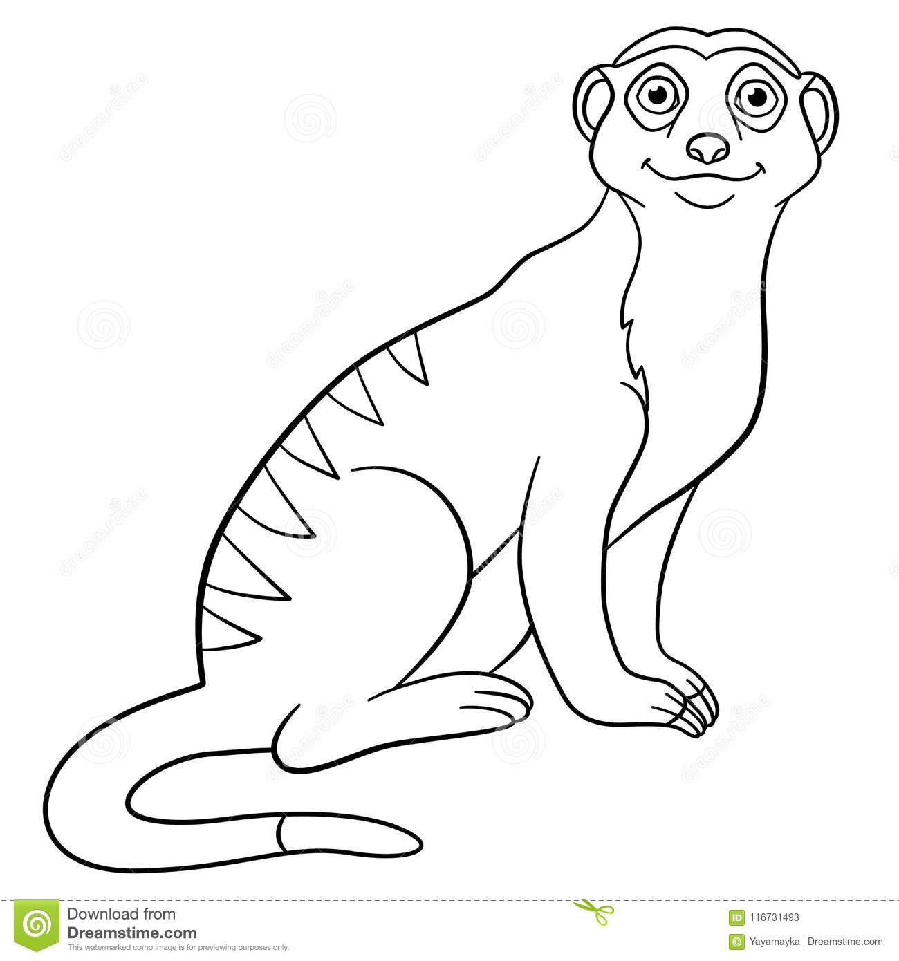 Coloring Pages Little Cute Meerkat Smiles Stock Vector