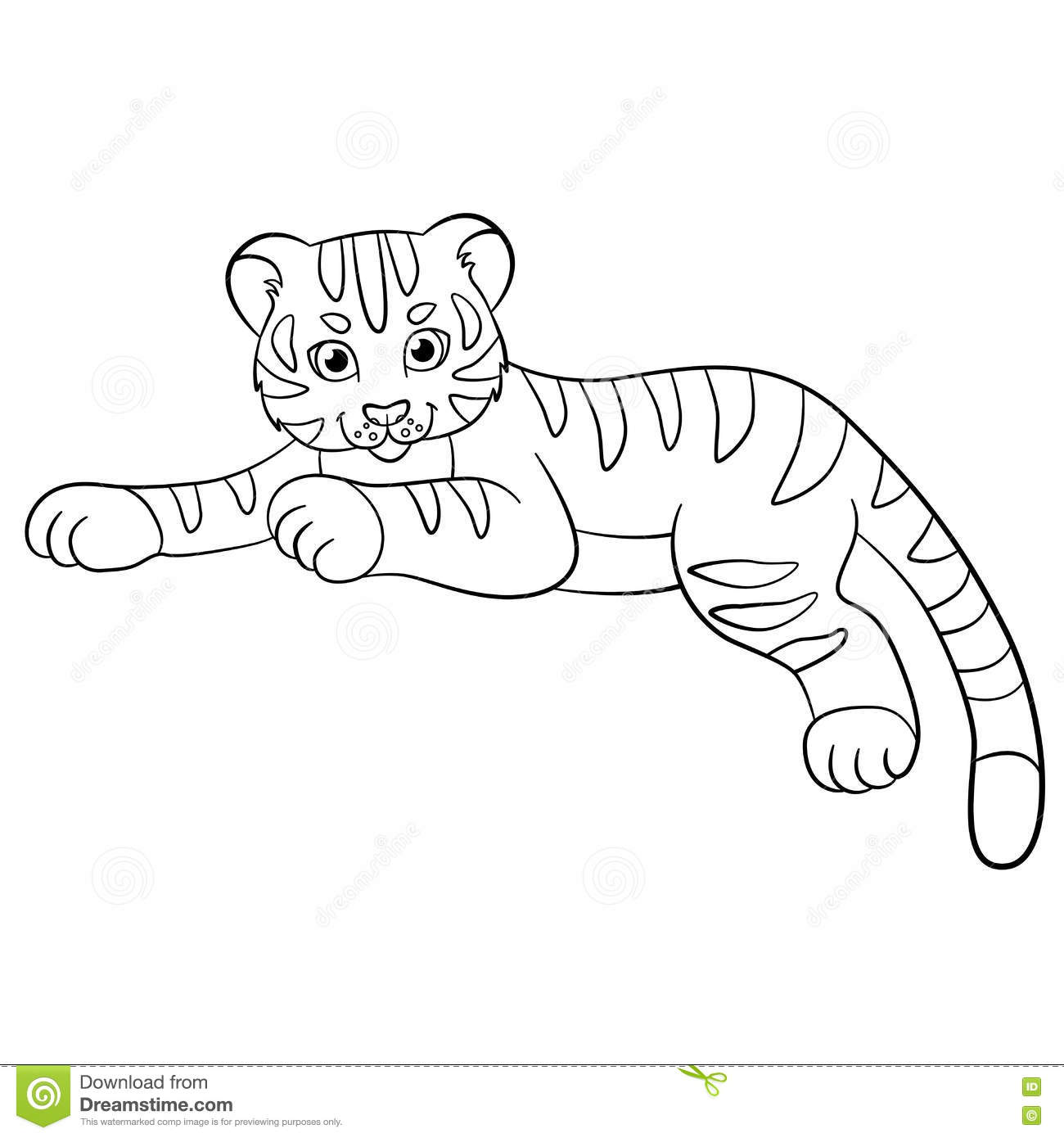 Coloring Pages Wild Animals Little Cute Baby Tiger