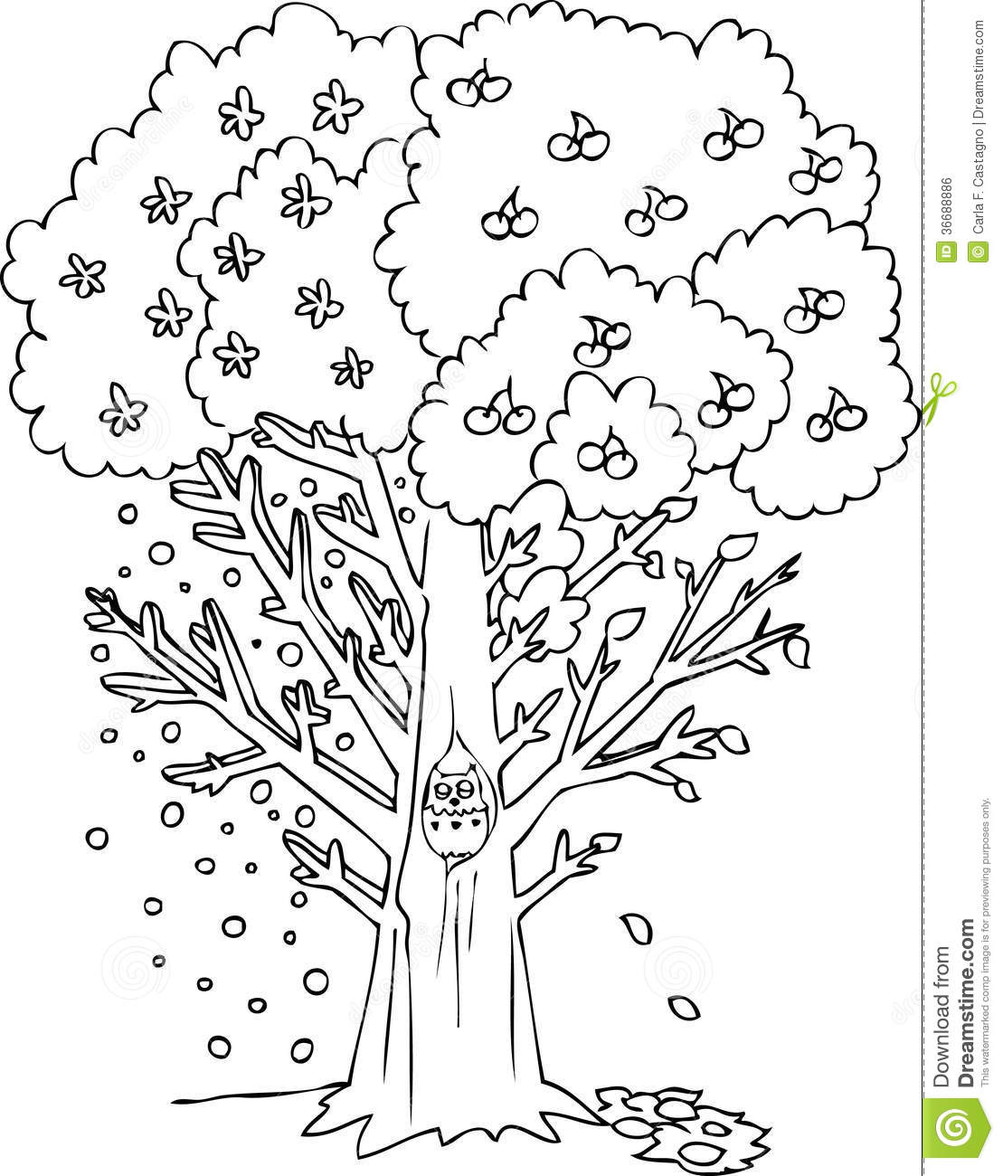 Coloring Season Tree Vector Stock Vector