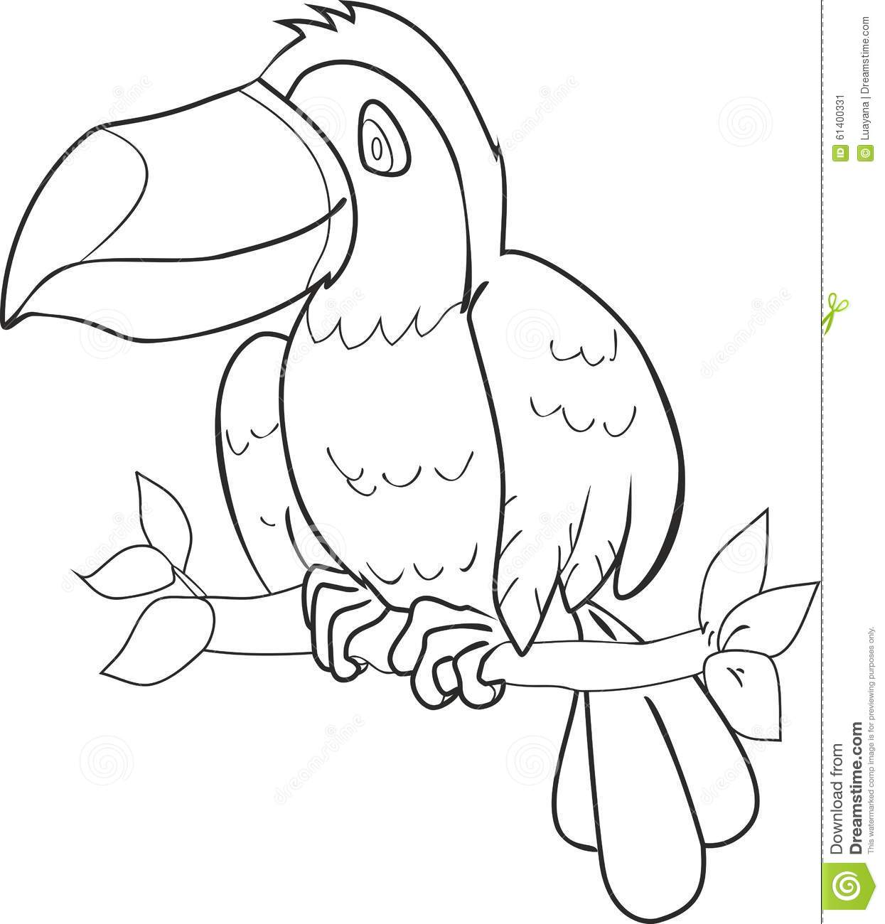 Coloring With Toucan Stock Vector