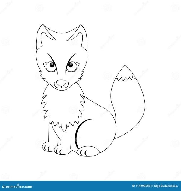 arctic fox coloring page # 31