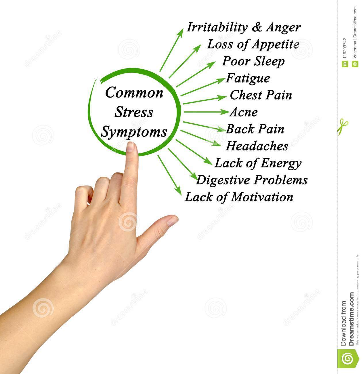 Common Stress Symptoms Stock Photo Image Of Components
