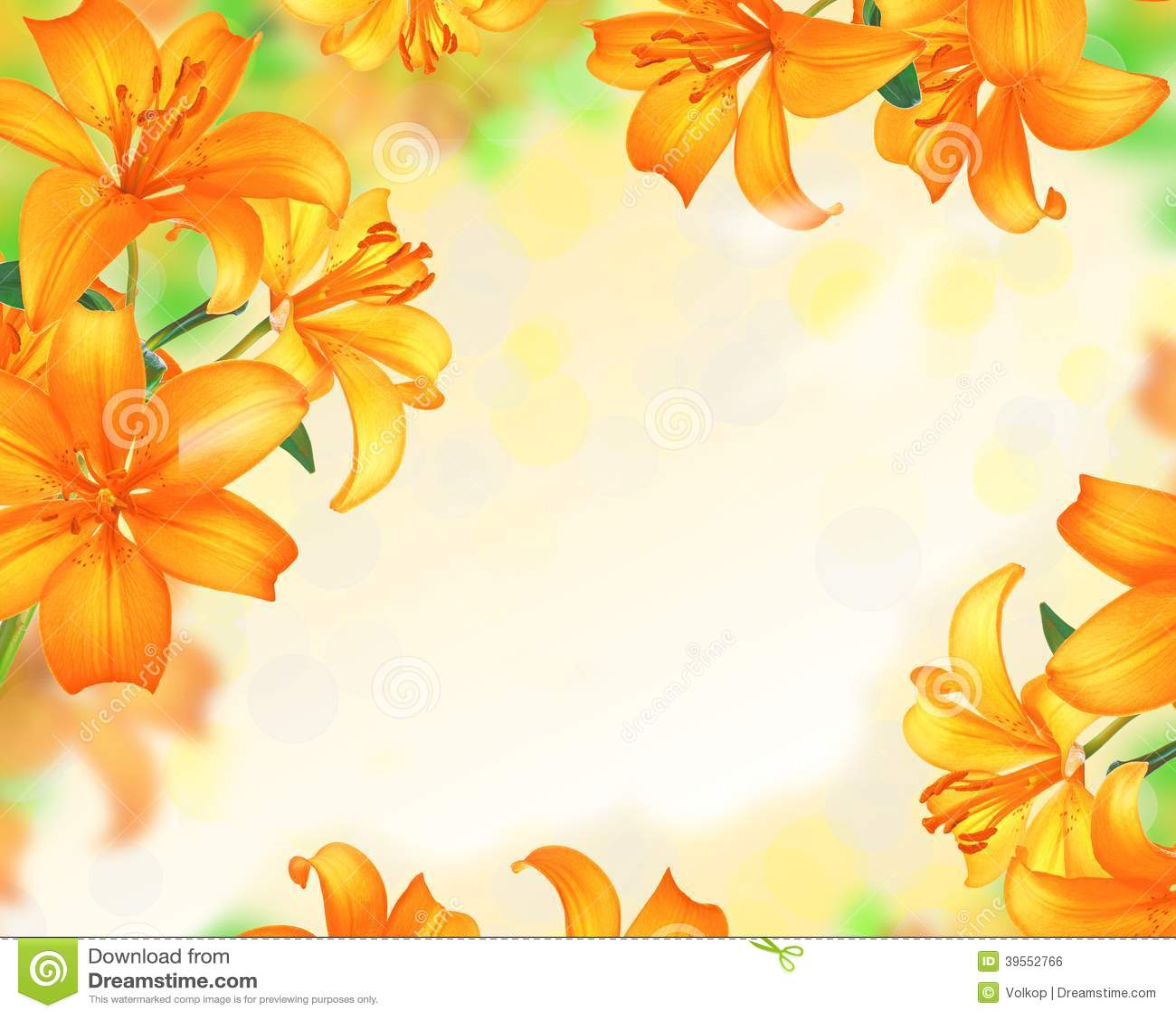 Conception De Frontiere De Lily Flowers Photo Stock