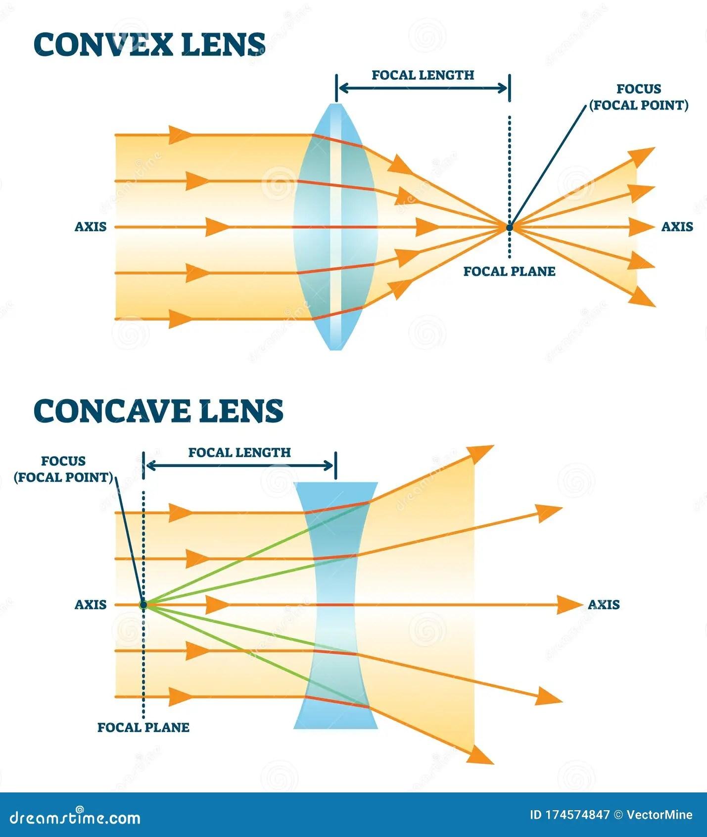 Convex And Concave Lens Vector Illustration Diagrams