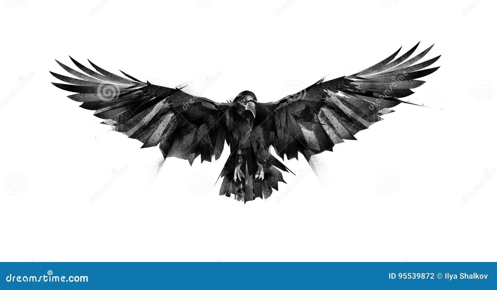 Corvo Tirato Dell Uccello Di Volo Su Fondo Bianco