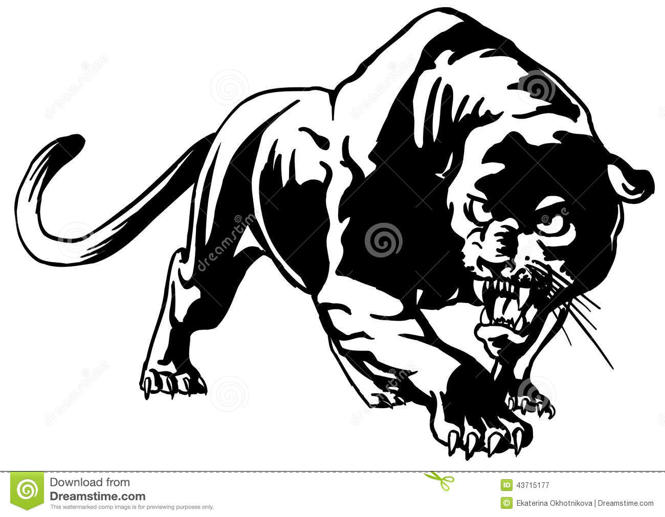 Cougar Stock Vector Image Of Symbol Mammal Animal