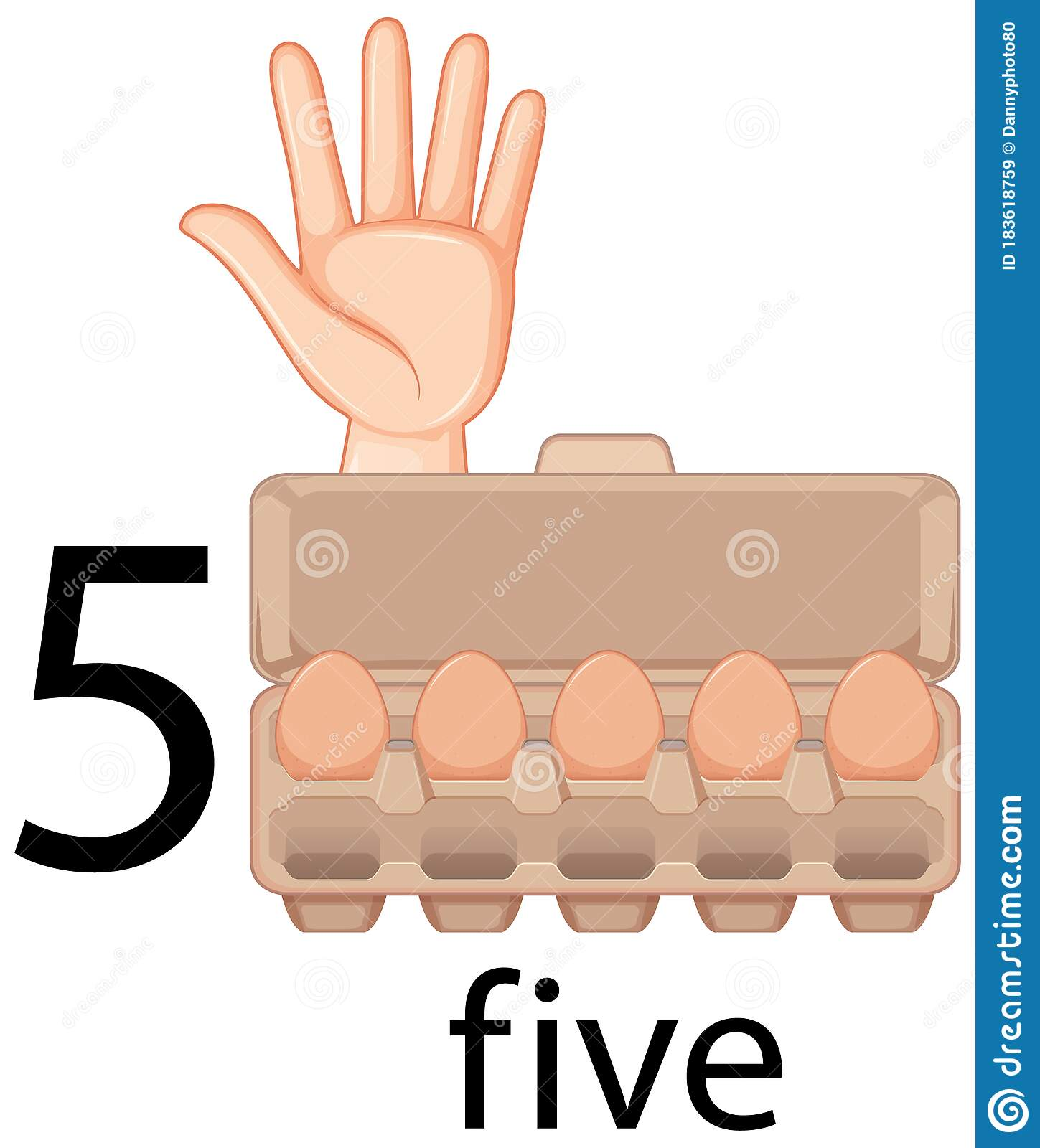 Counting Number Five With Hand Gesture And Eggs In Carton