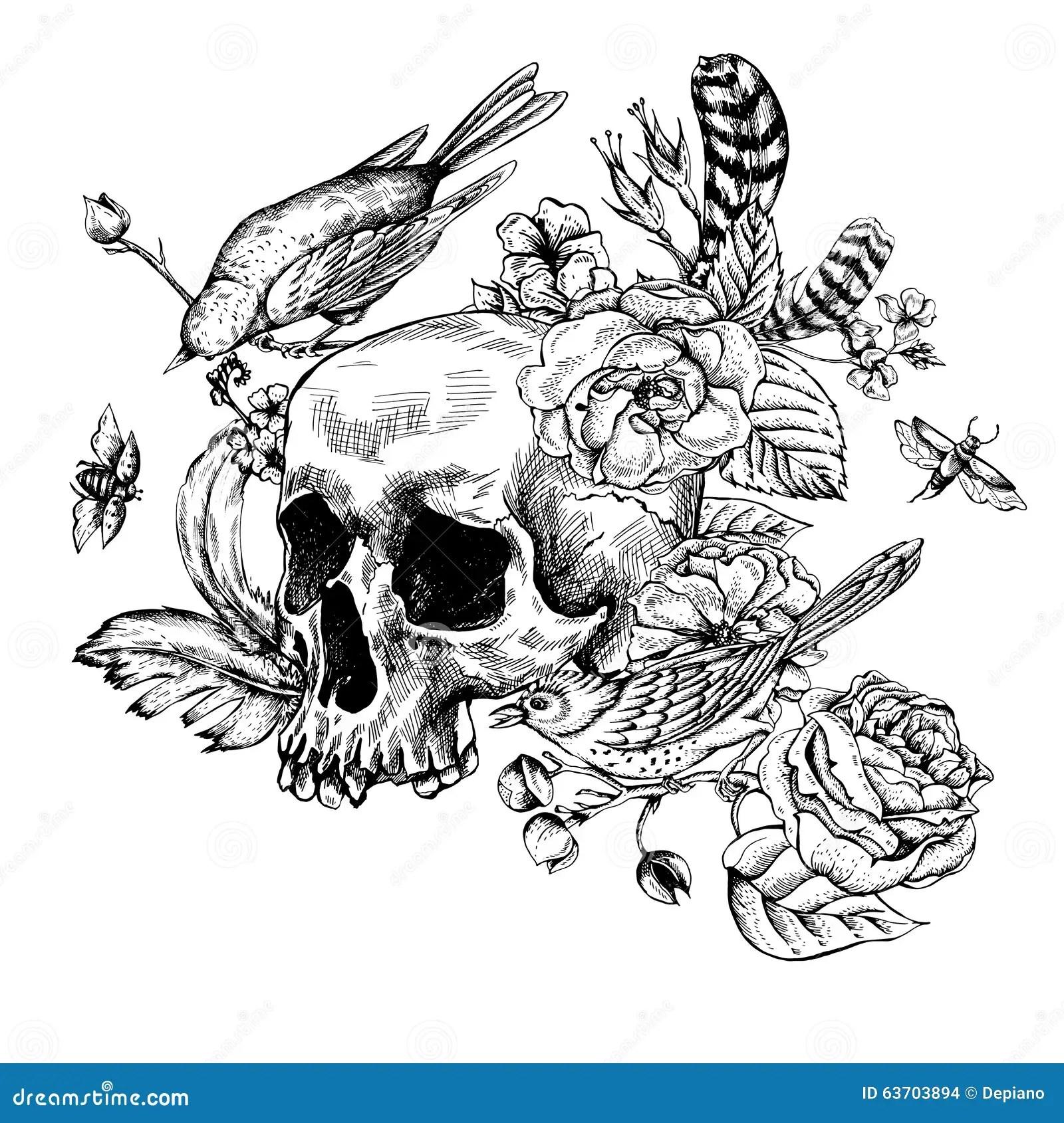 Cranio Com Flores Rosas Passaros E Penas Ilustracao Do