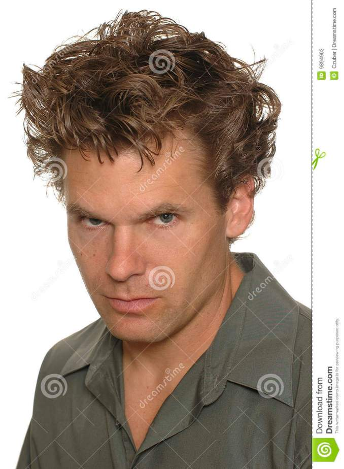 crazy hair stock image. image of model, caucasion, brown