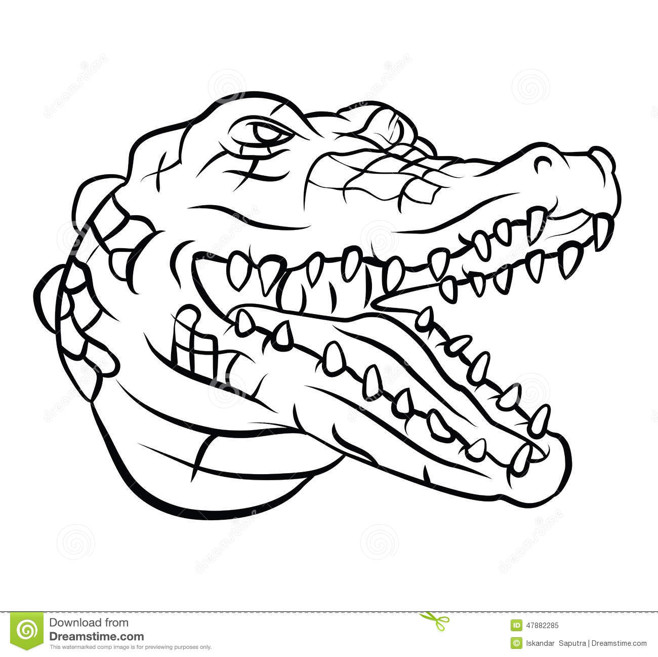 Crocodile Stock Vector Illustration Of Nature Dangerous