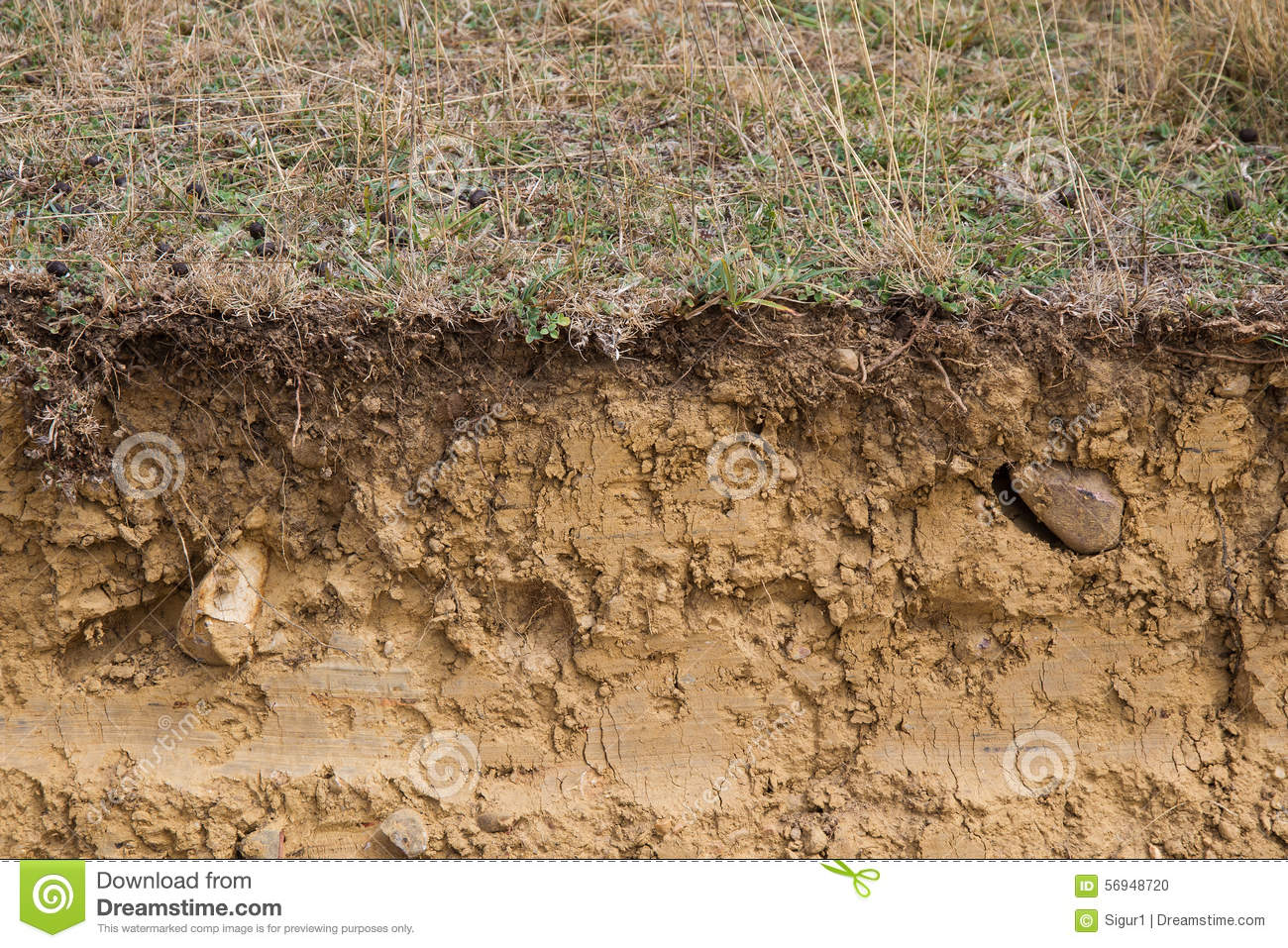 Cross Section Of Land Clay Stock Photo Image Of Field