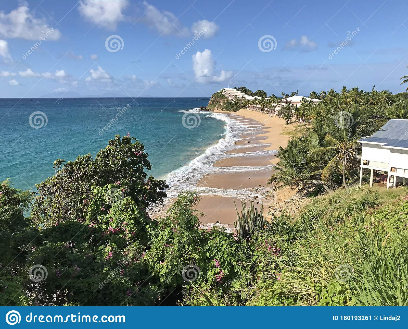 curtain bluff resort st mary antigua and barbuda stock image image of deserted beach 180193261