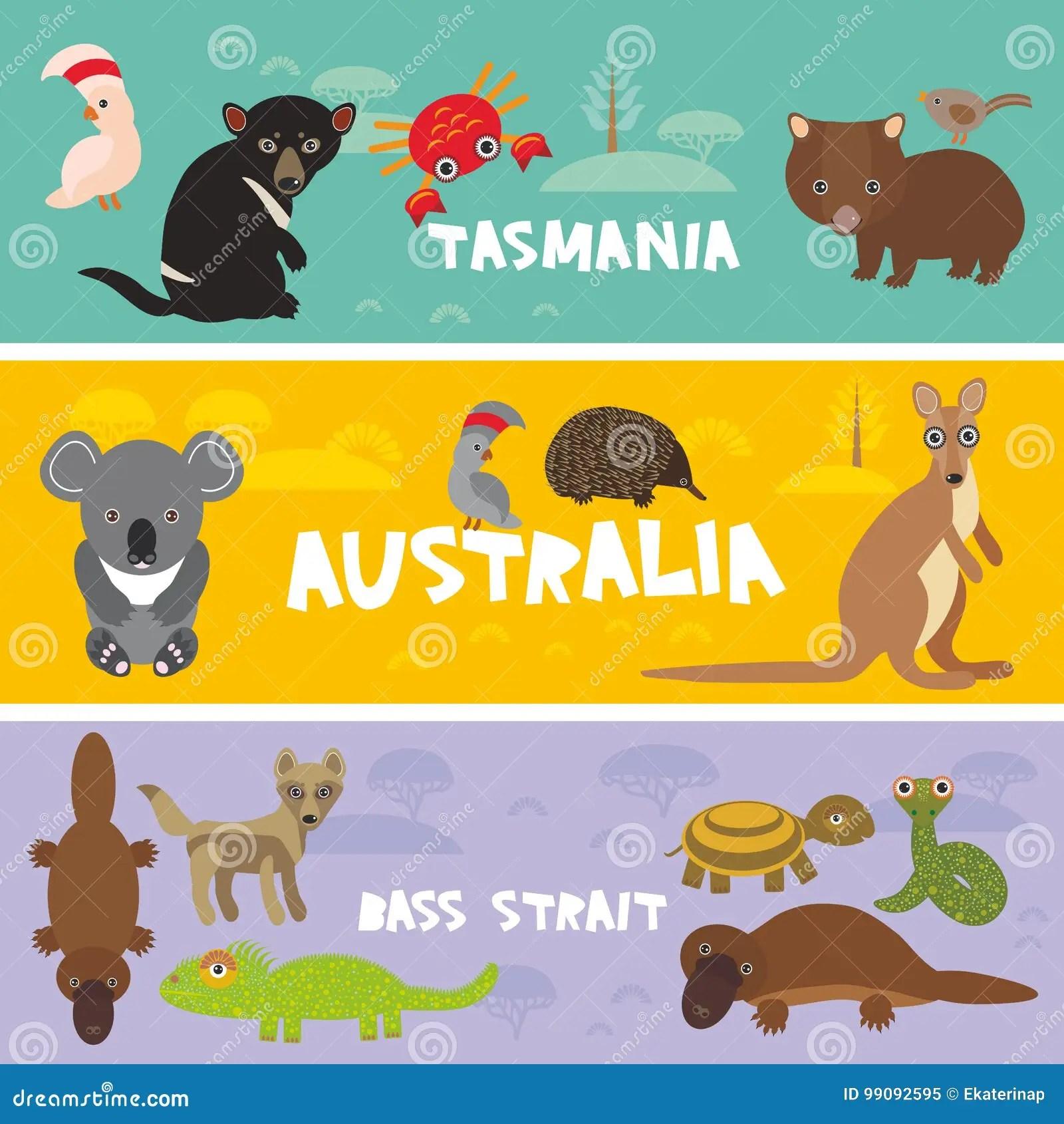 Cute Animals Set Echidna Koala Platypus Tasmanian Devil