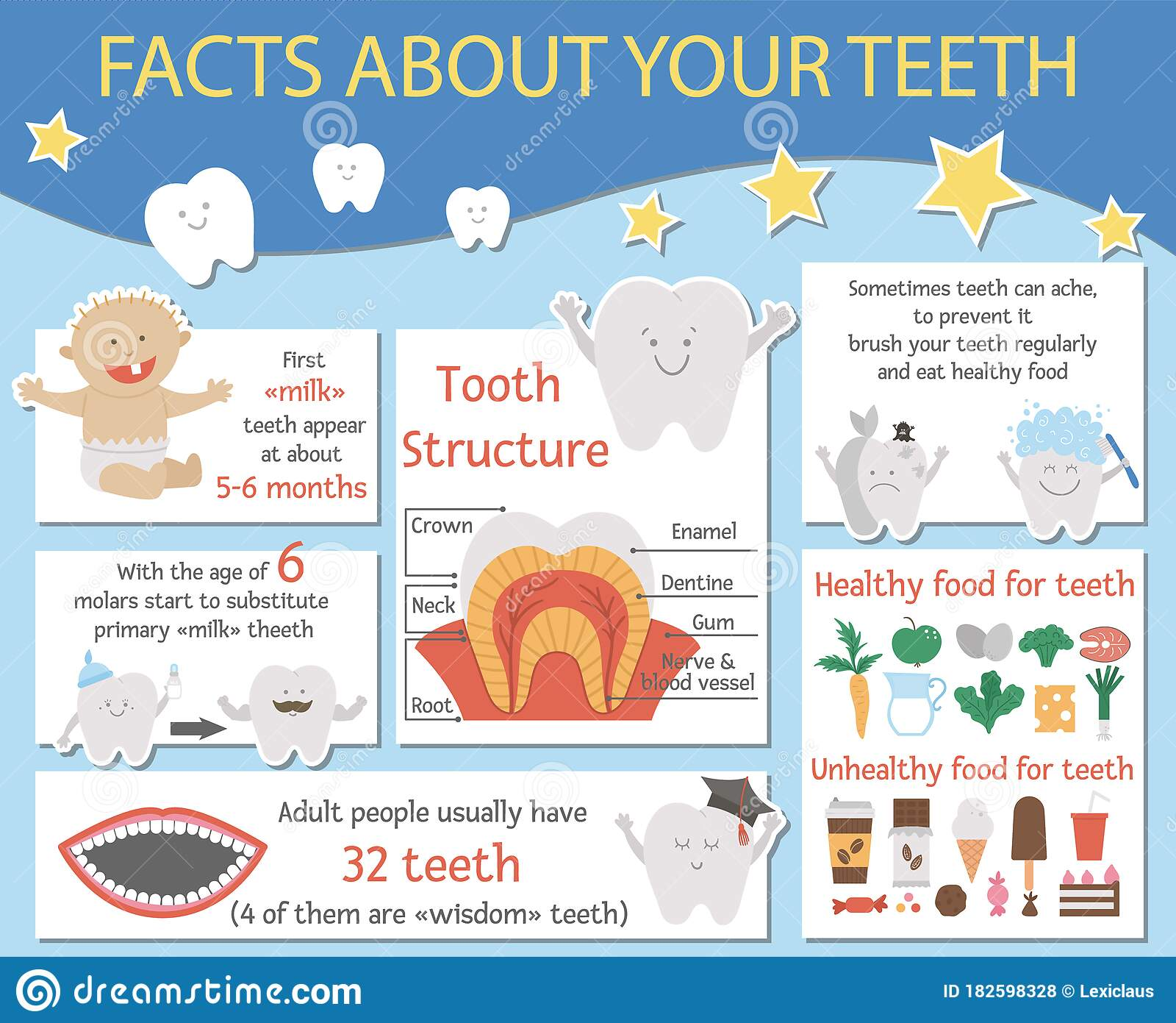 Cute Dental Care Infographics For Kids Vector Funny