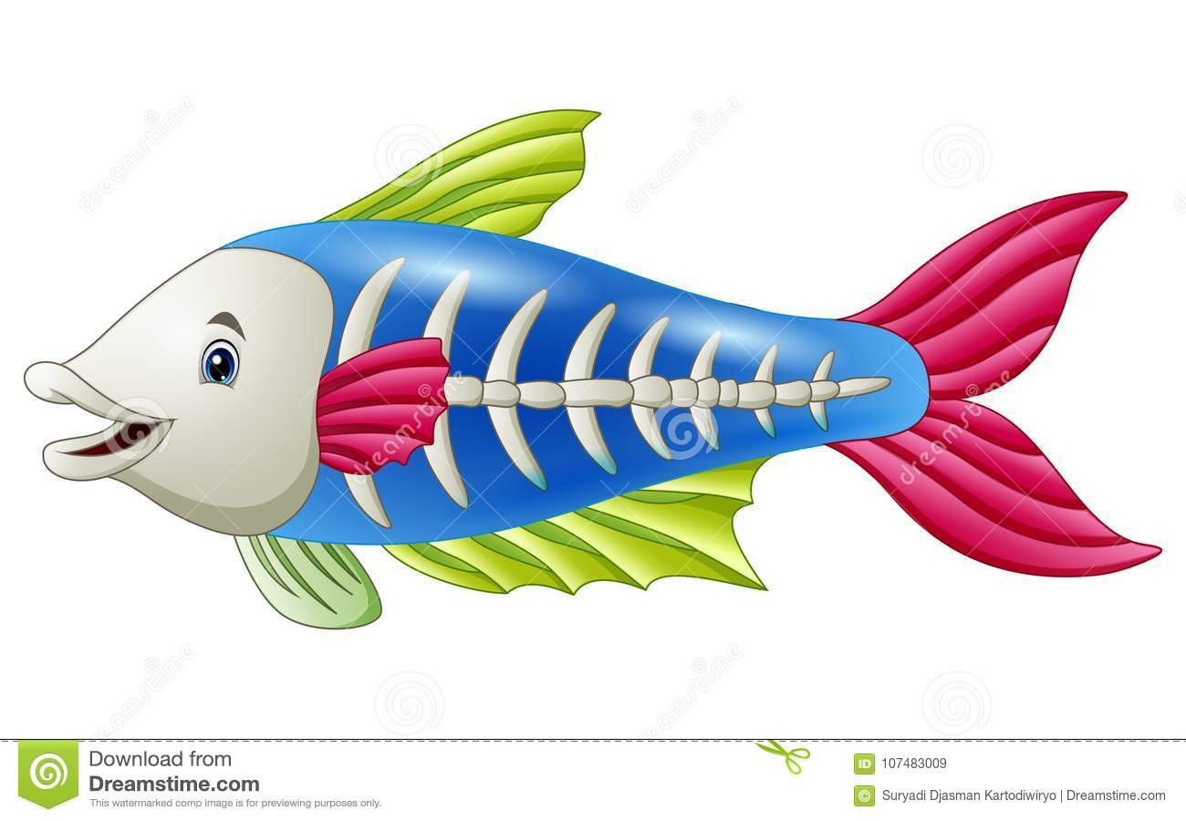 Cute X Ray Fish Cartoon Stock Vector Illustration Of