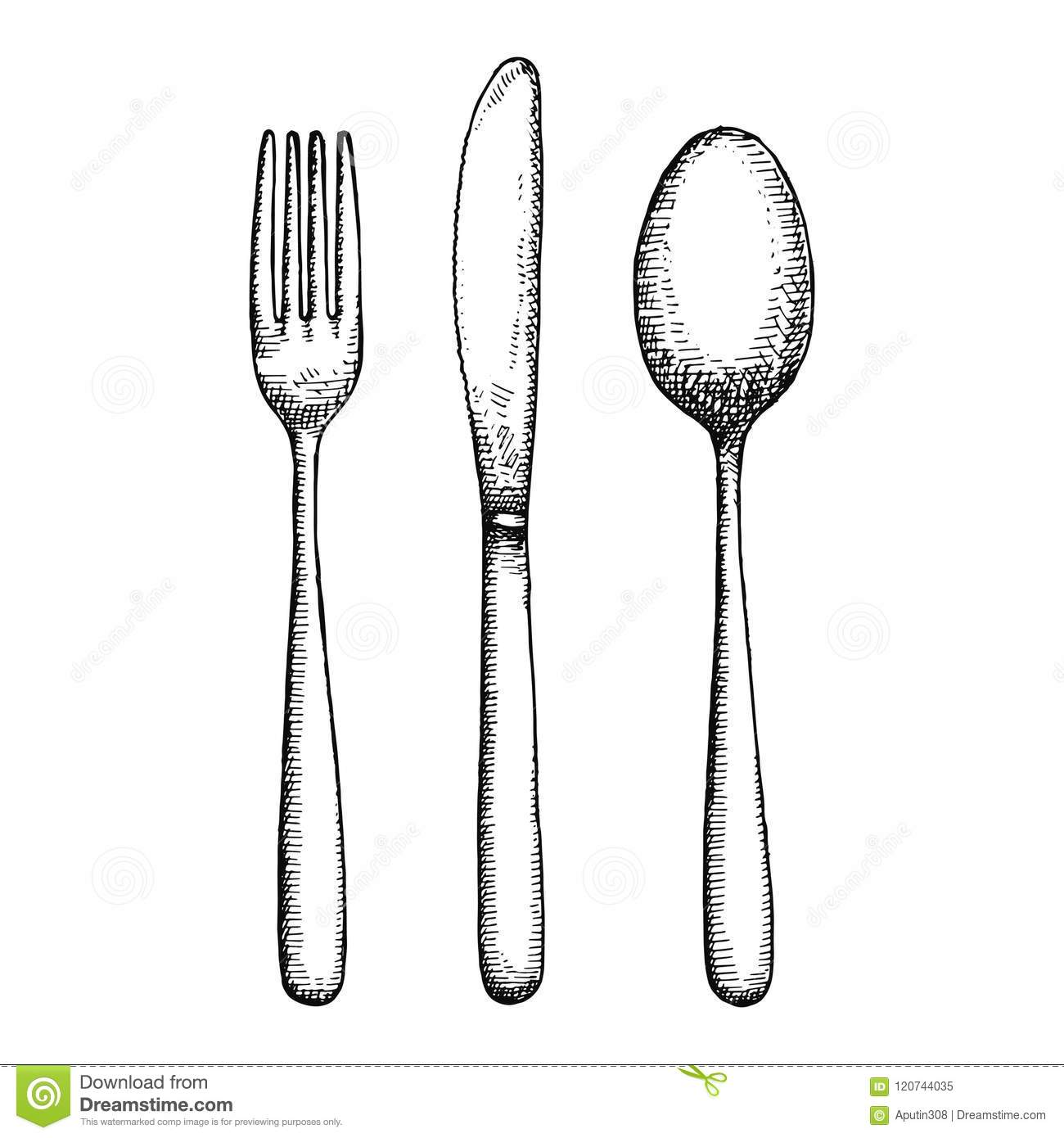 Cutlery Hand Drawing Vector Isolated Spoon Fork And Knife