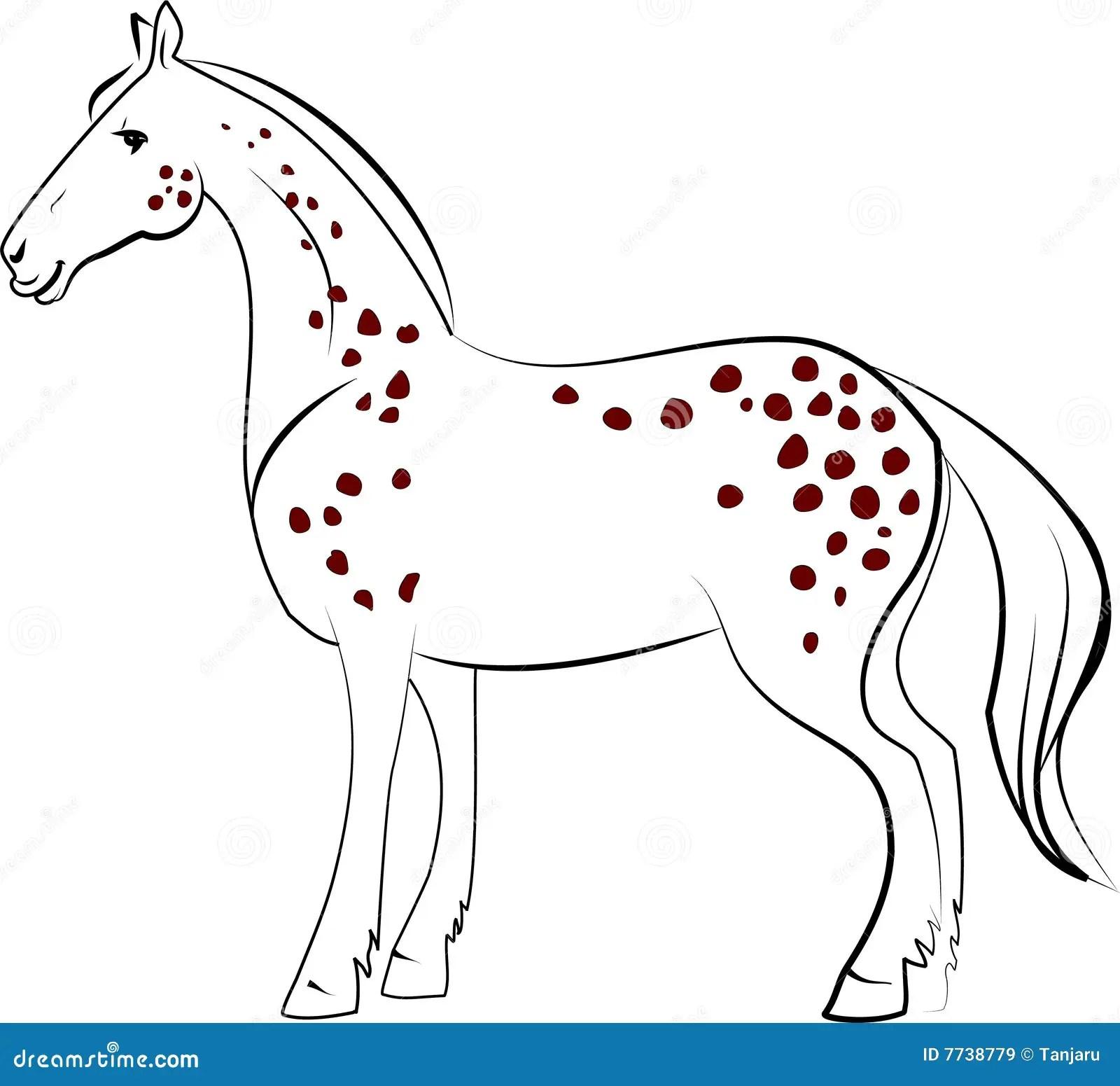Dapple Horse Royalty Free Stock Images