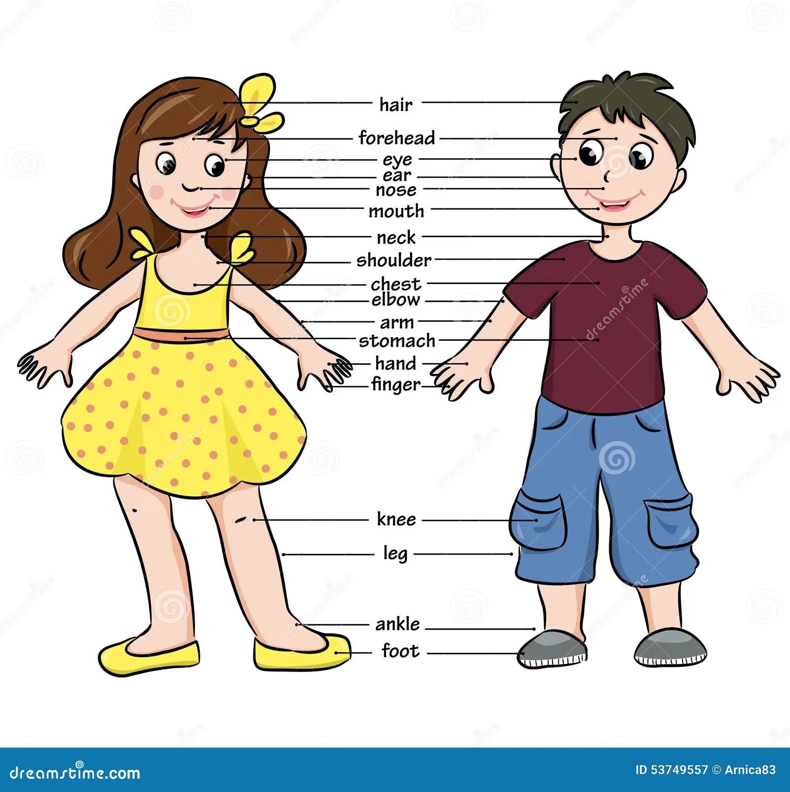De Jongen En Het Meisje Van Het Beeldverhaal Woordenschat
