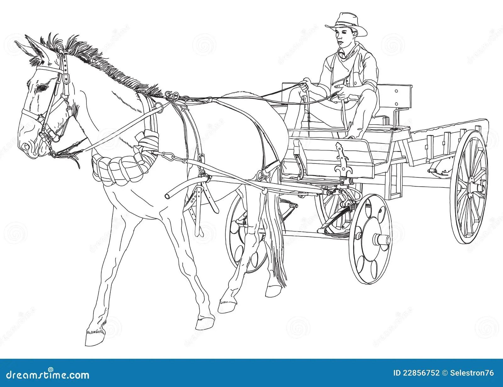 De Ritten Van De Cowboy In Een Wagen Door Een Paard